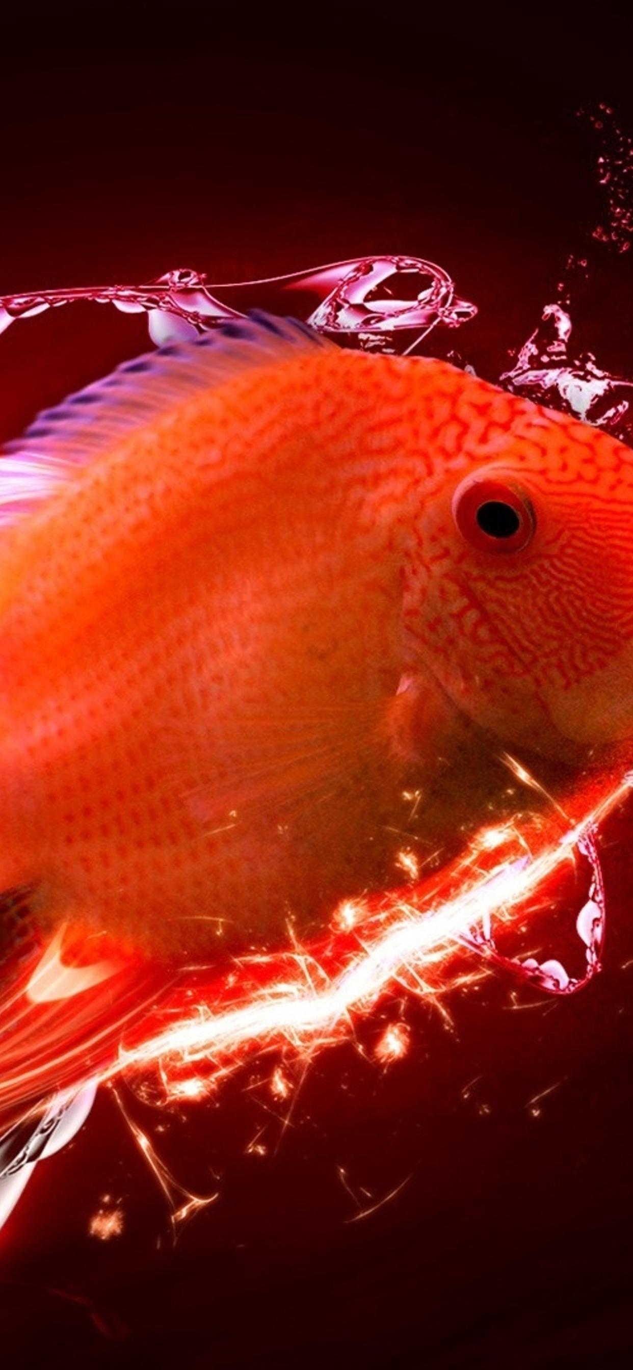Abstract Red Fish In A Hd Wallpaper