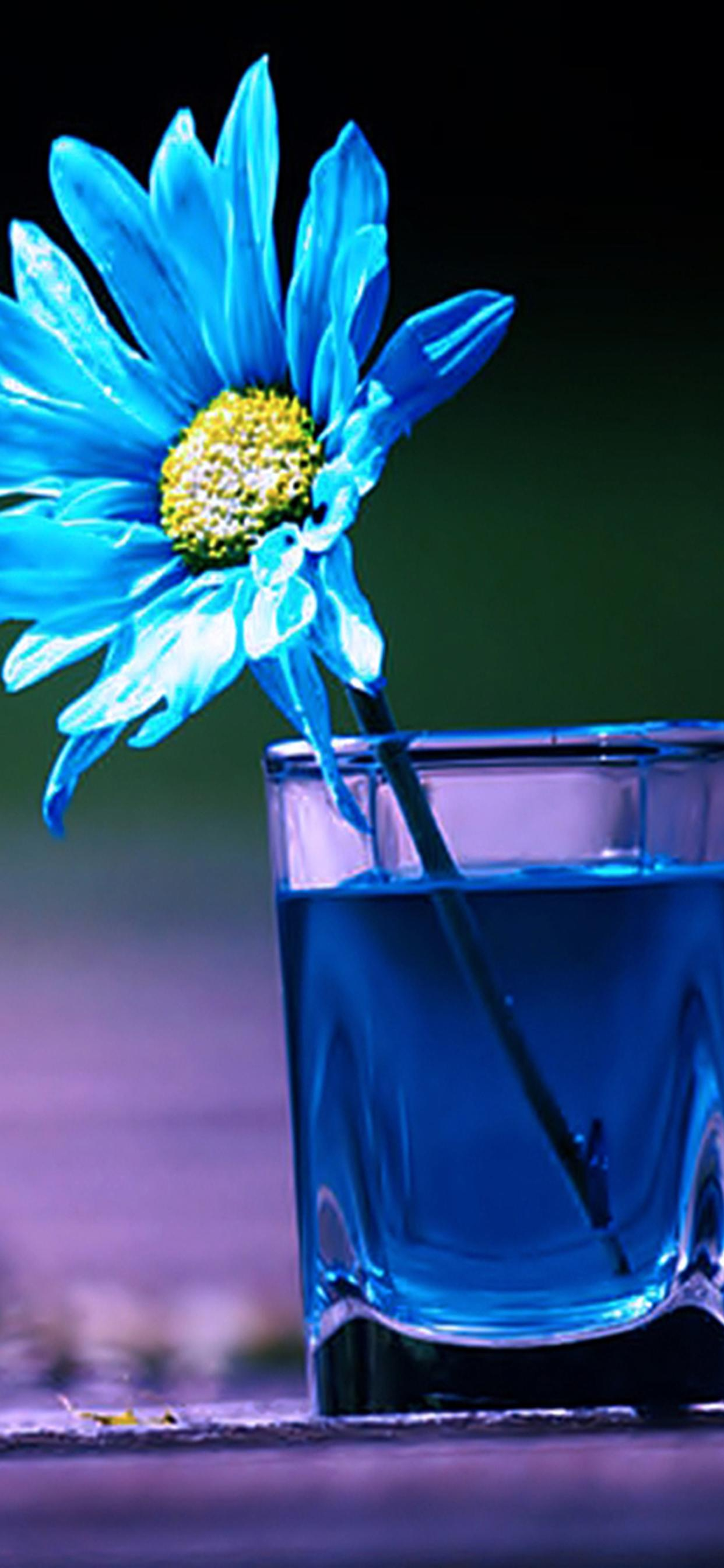 Blue Flower In A Glass With Blue Water Abstract 3d Wallpaper
