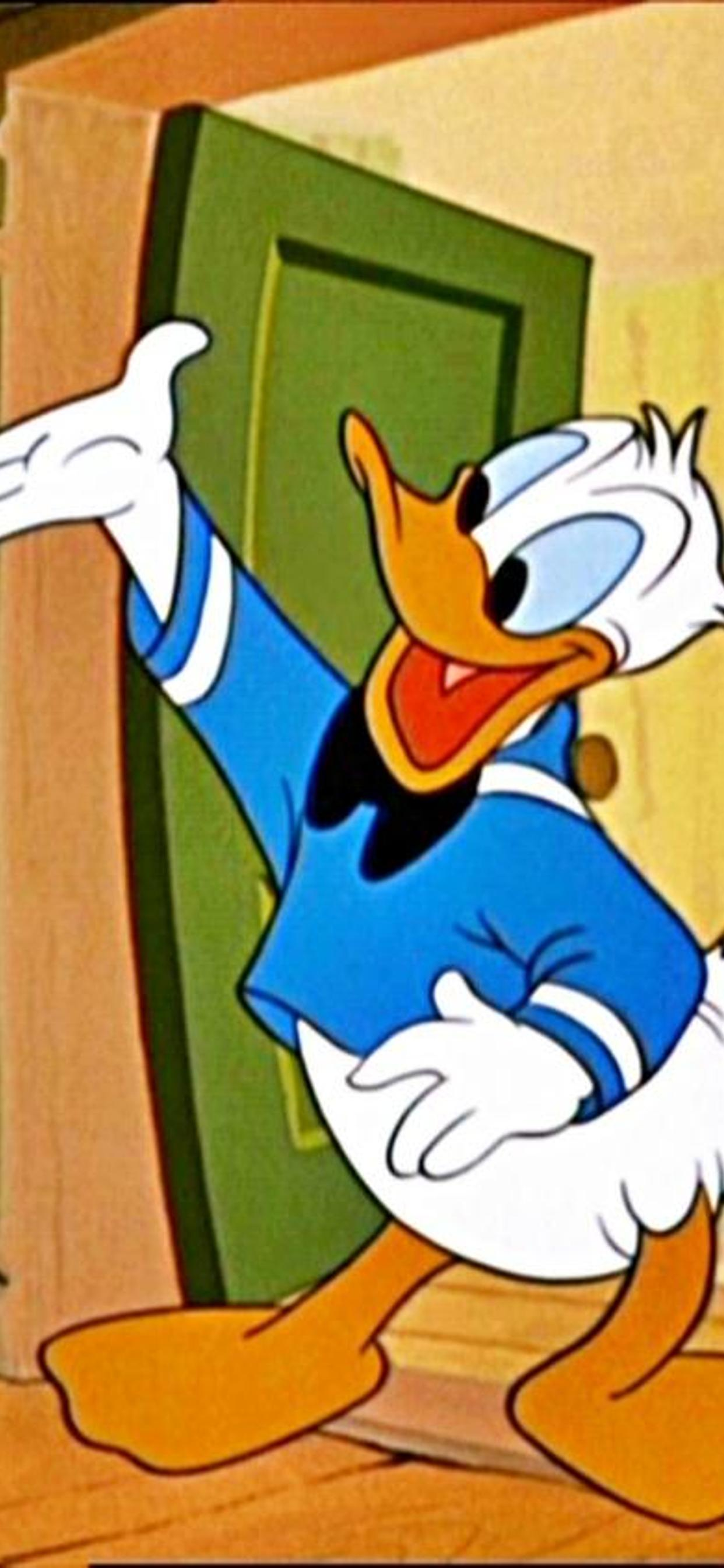 Donald Duck Happy At The Door Cartoon Wallpaper