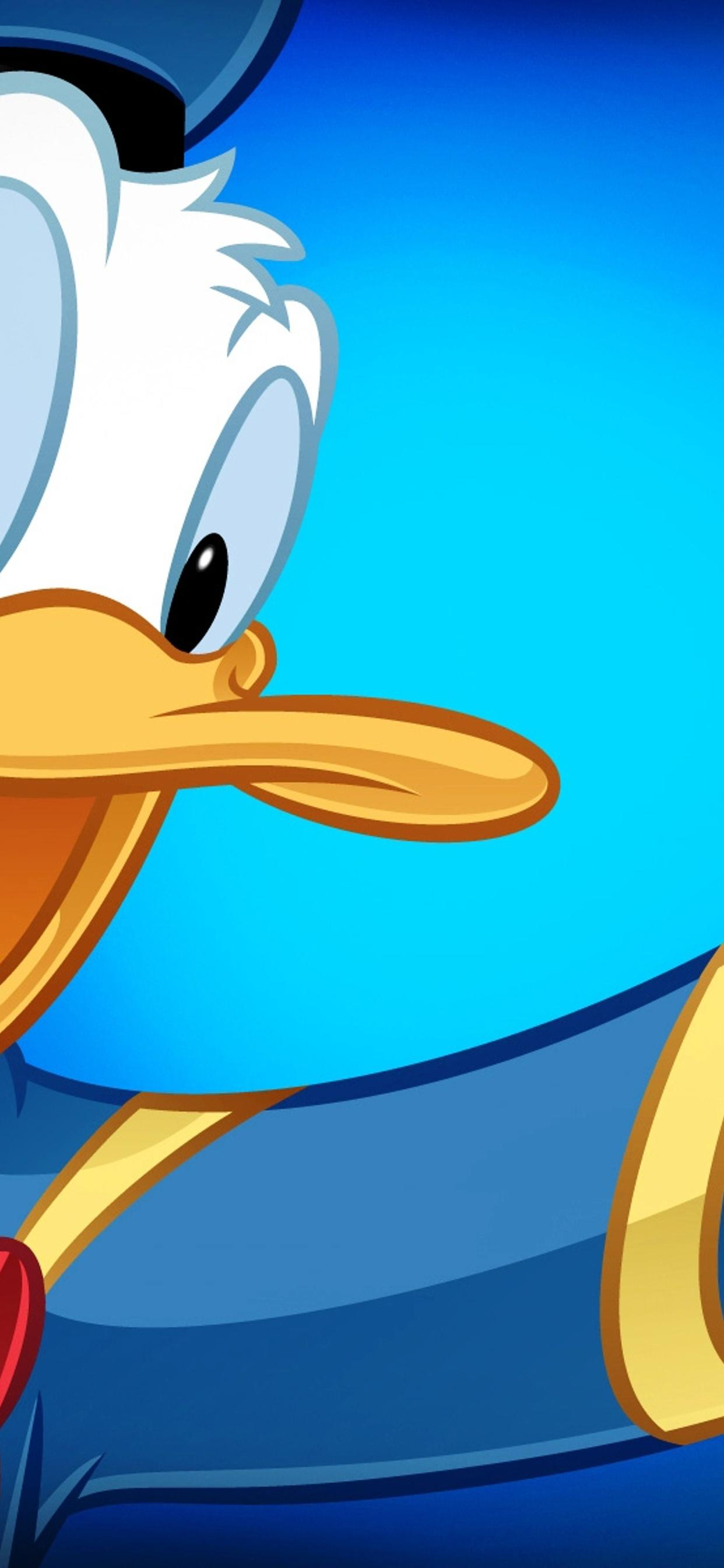Donald Duck In Blue Cartoon Wallpaper