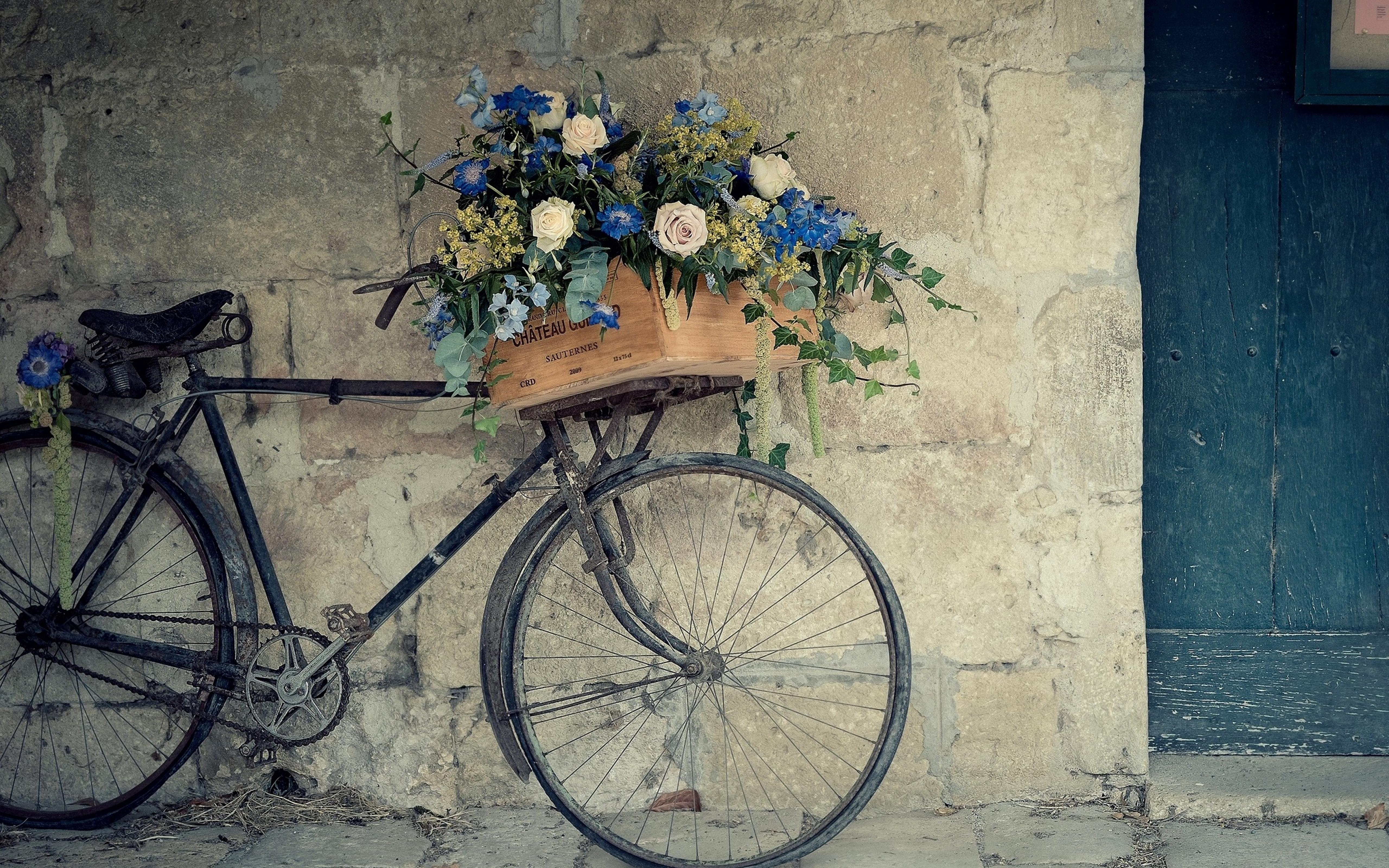 Download Wallpaper 5120x3200 A Basket With Flowers On The Old Bicycle