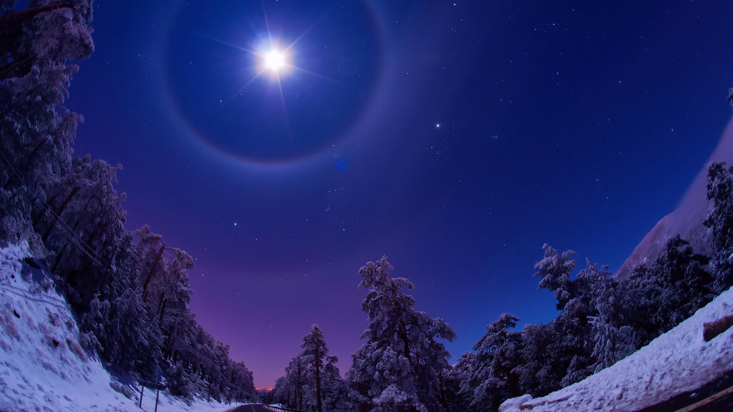 A Big Star In The Sky Brightenss Winter Night Wallpaper Download 2560x1440