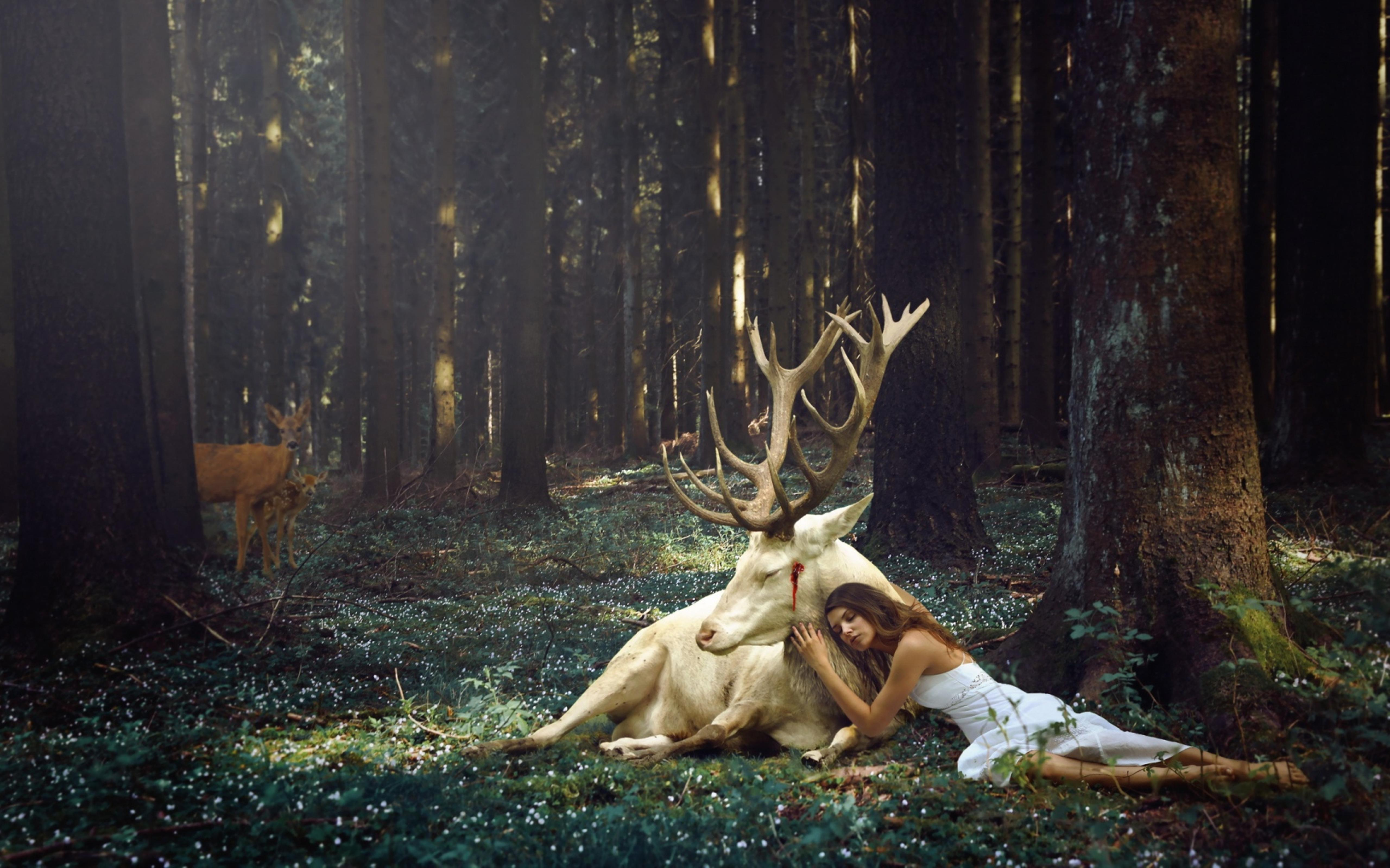 Simple Wallpaper Forest Girl - a-girl-beside-a-white-deer-in-the-forest-5120x3200  2018_981375 .jpg