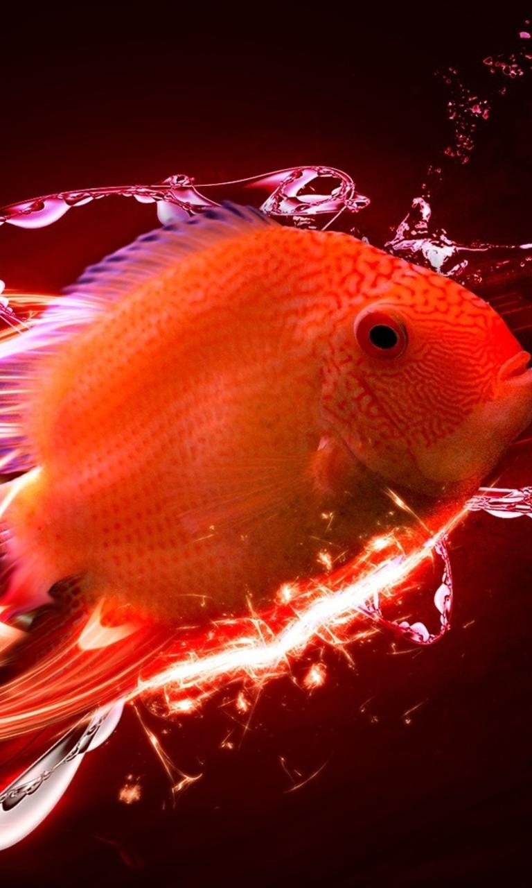 Amazing Wallpaper Fish Touch - abstract-red-fish-in-a-hd-wallpaper-768x1280  Pictures_55370 .jpg