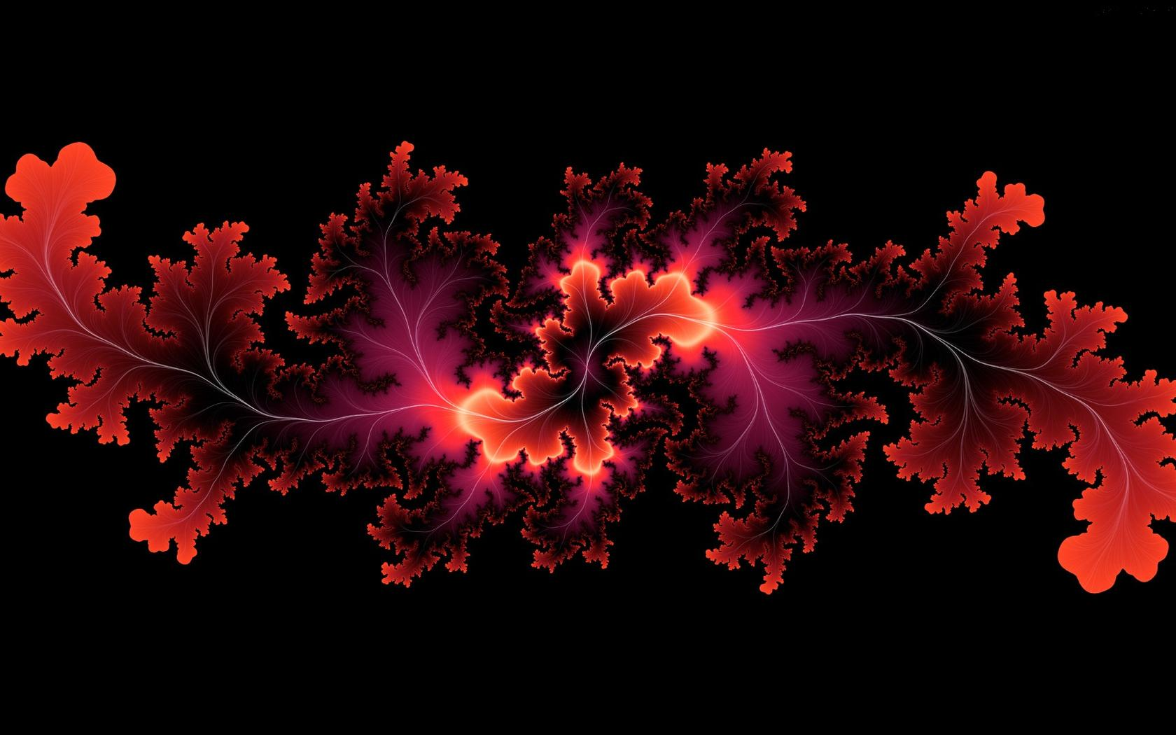 Abstract Red Leaves HD Wallpaper Wallpaper Download 1680x1050
