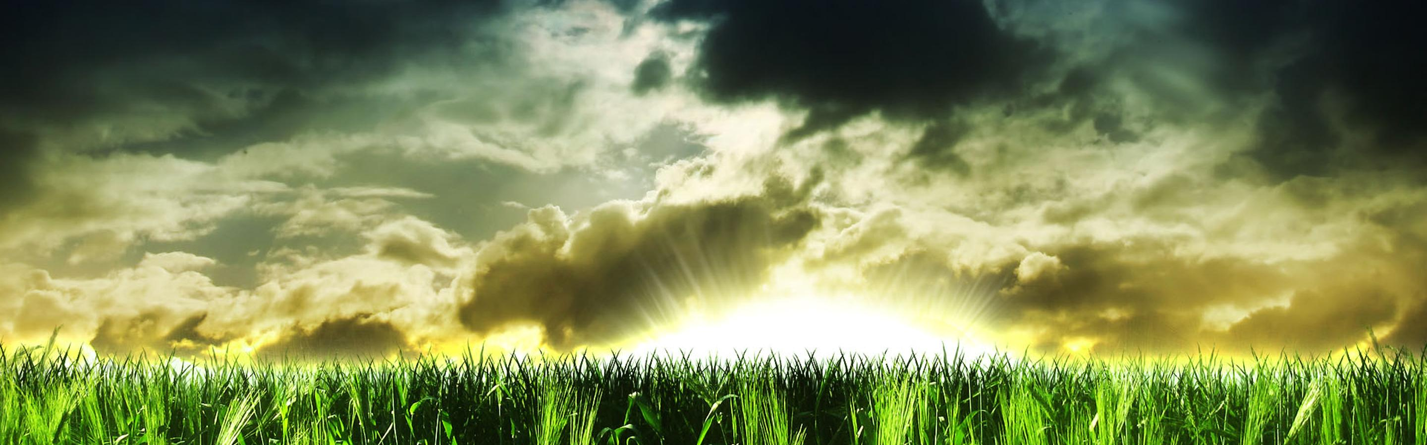 abstract wallpaper - green field and big sun wallpaper download 2880x900