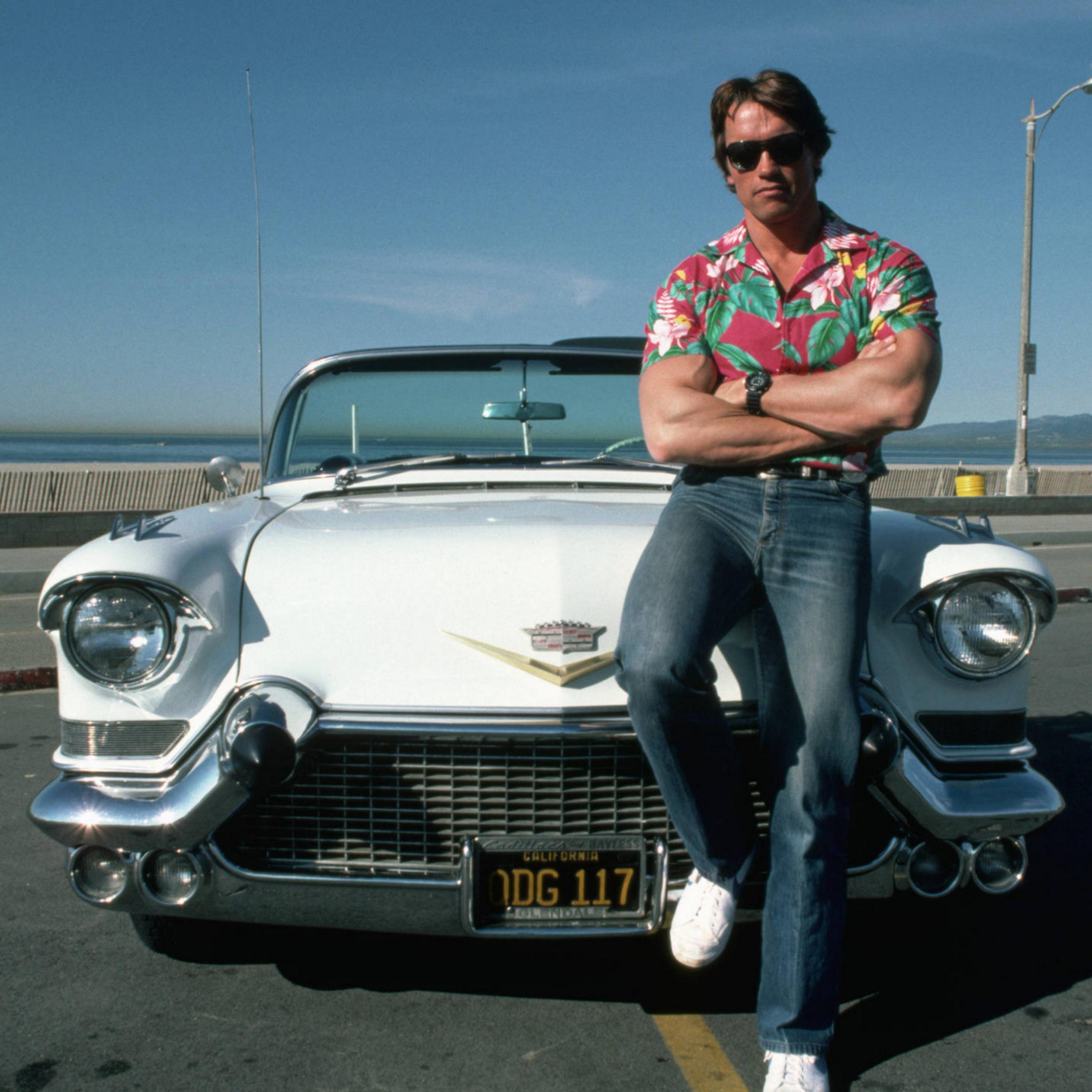 arnold schwarzenegger sit on a white car wallpaper download 2524x2524