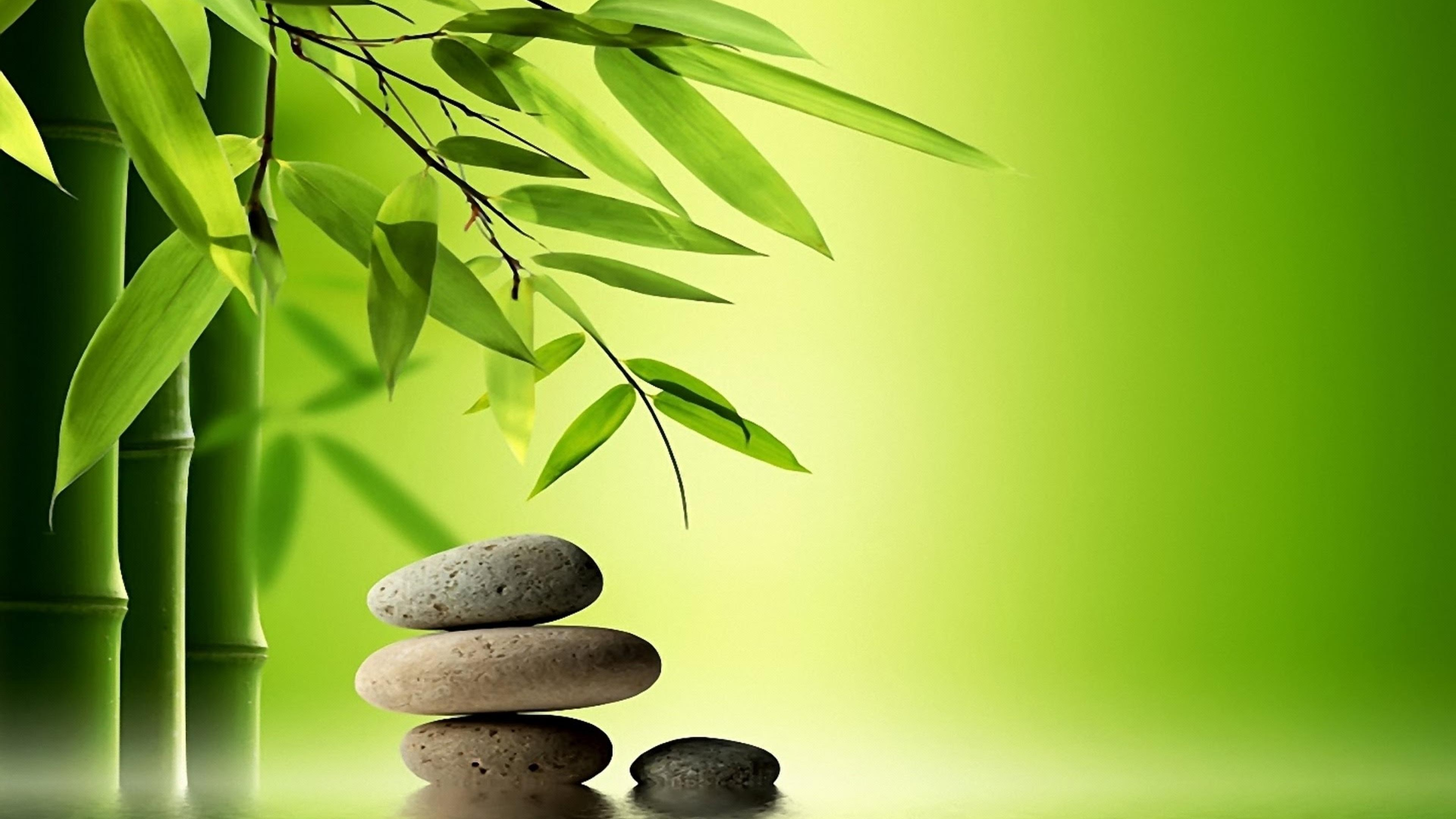 therapeutic massage green tree spring special