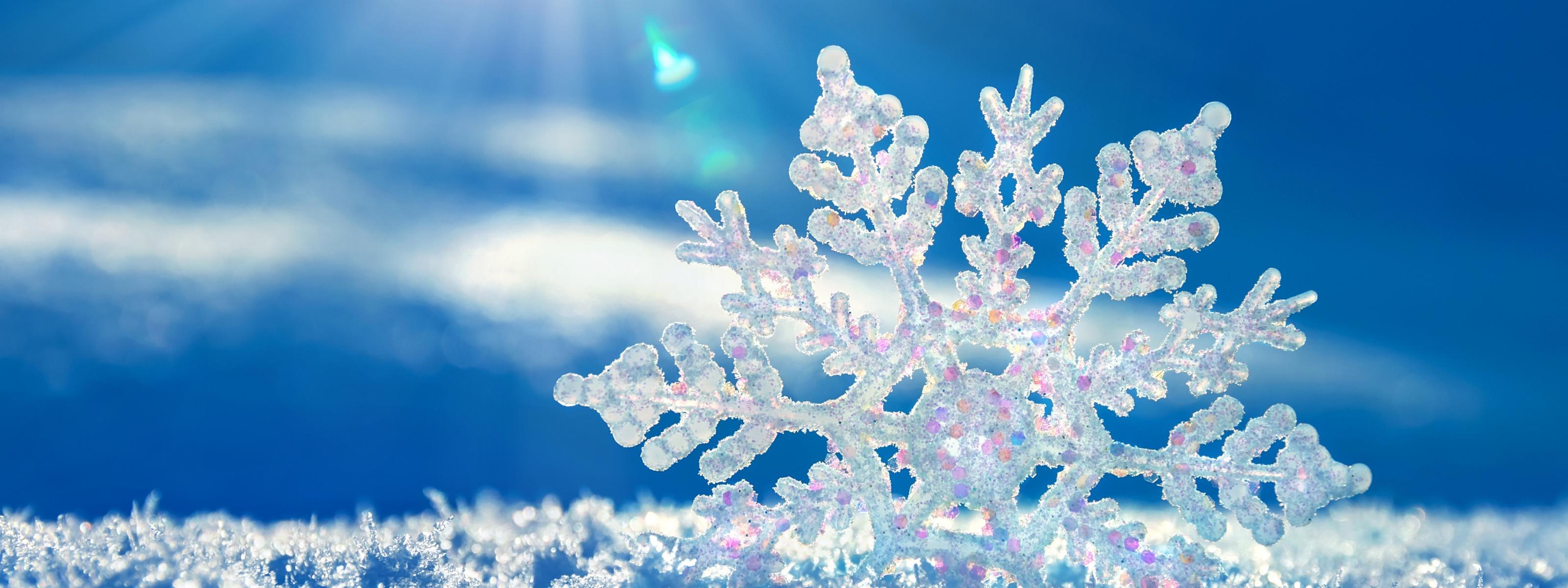 Beautiful Snowflake In The Sunlight