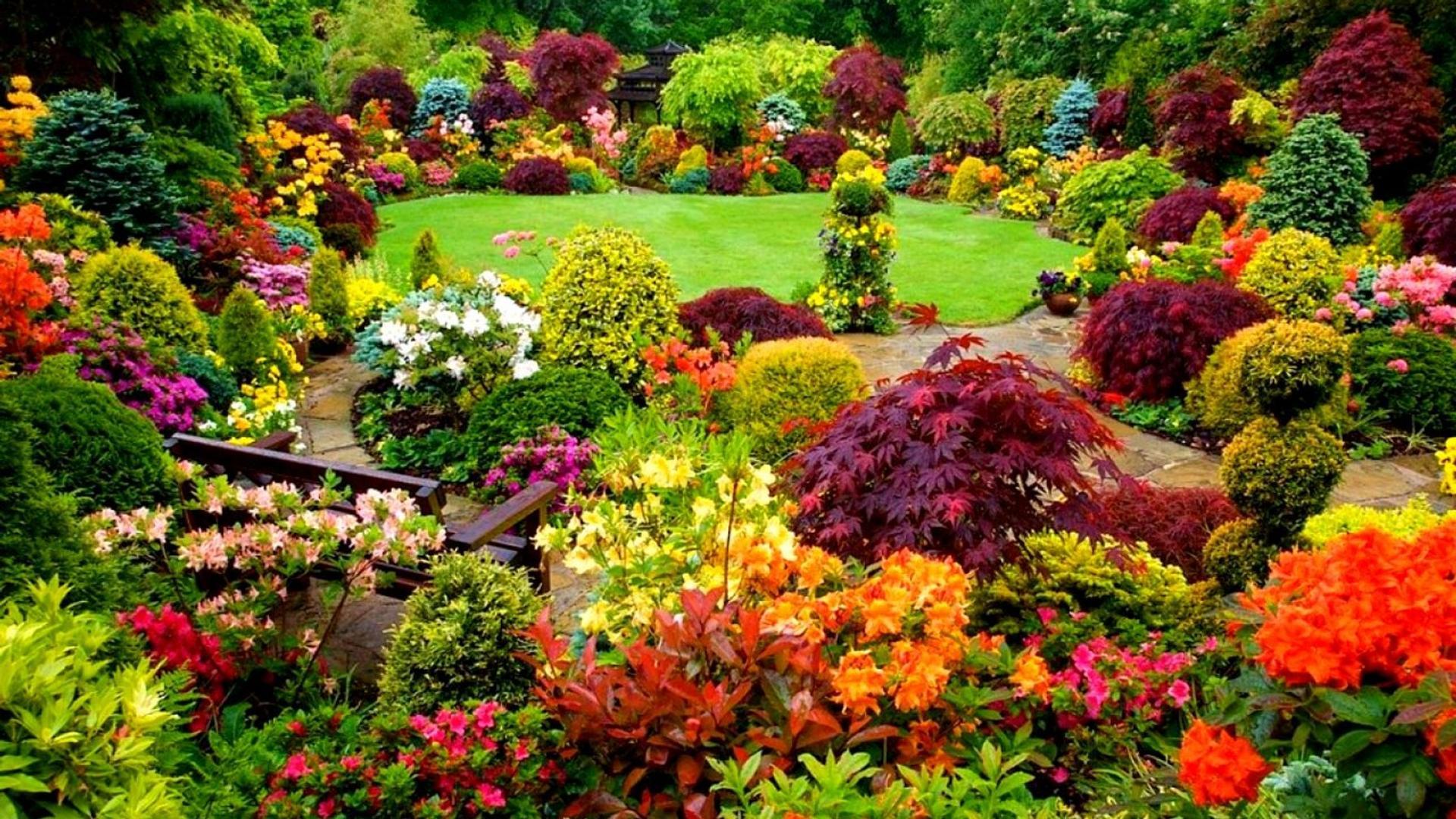 Nice Download Wallpaper 1920x1080 Beautiful Backyard Garden   Colorful Garden