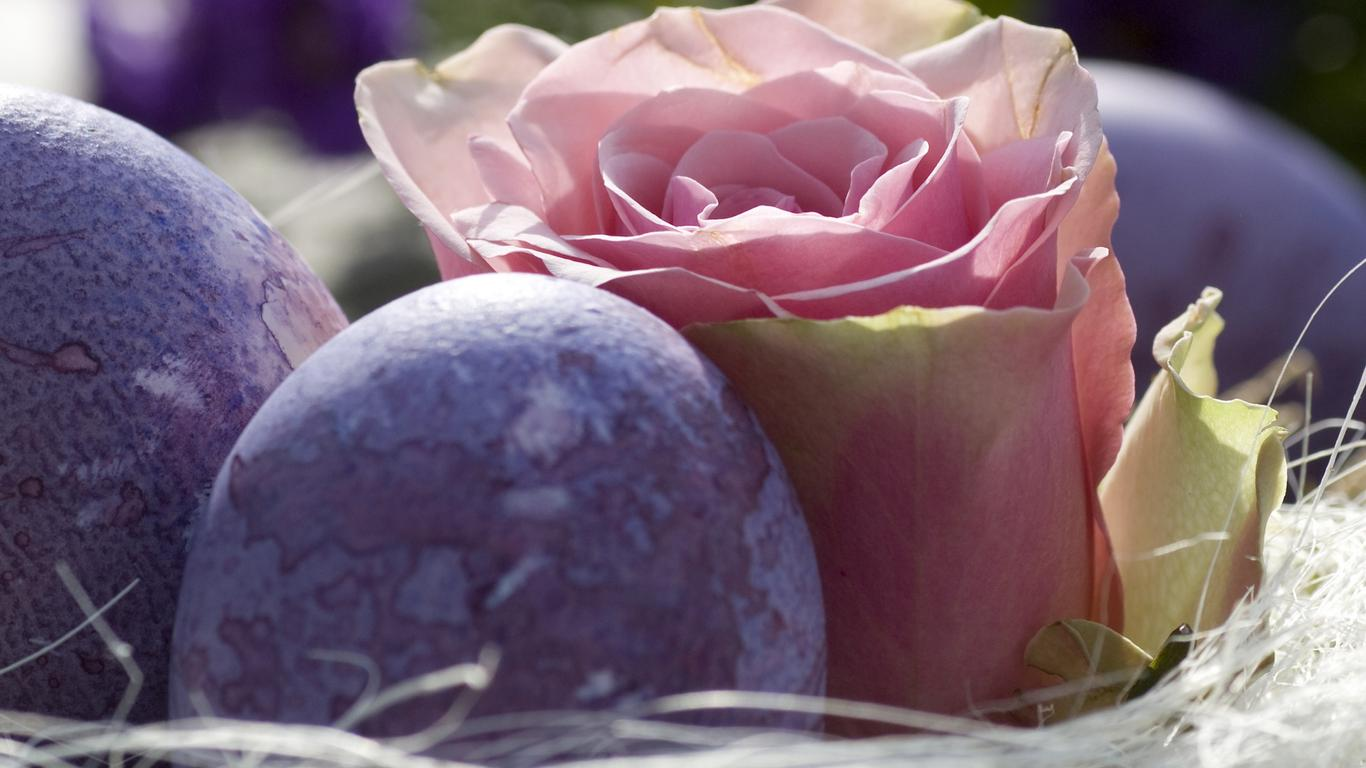Beautiful Pink Rose And Purple Easter Eggs On A Basket Wallpaper