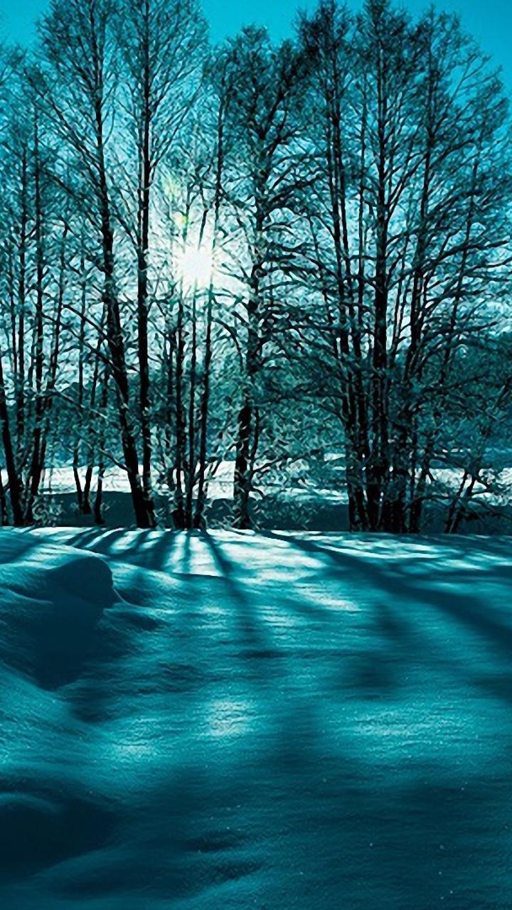 blue and green winter light - hd wallpaper wallpaper download 720x1280
