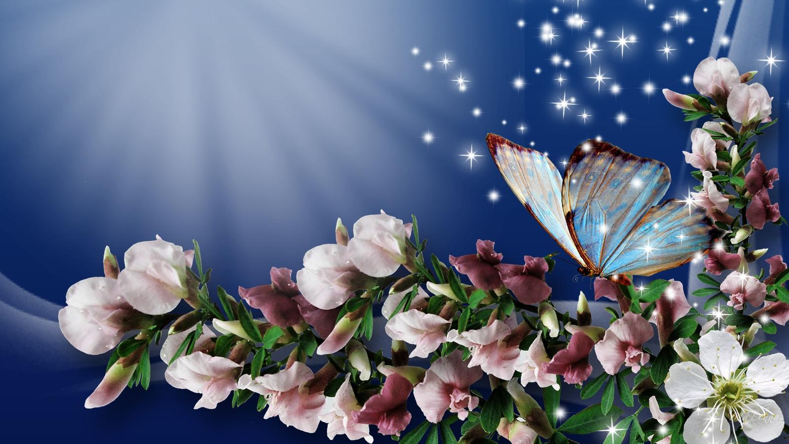 Butterfly on the beautiful flowers wallpaper download 1600x900 izmirmasajfo
