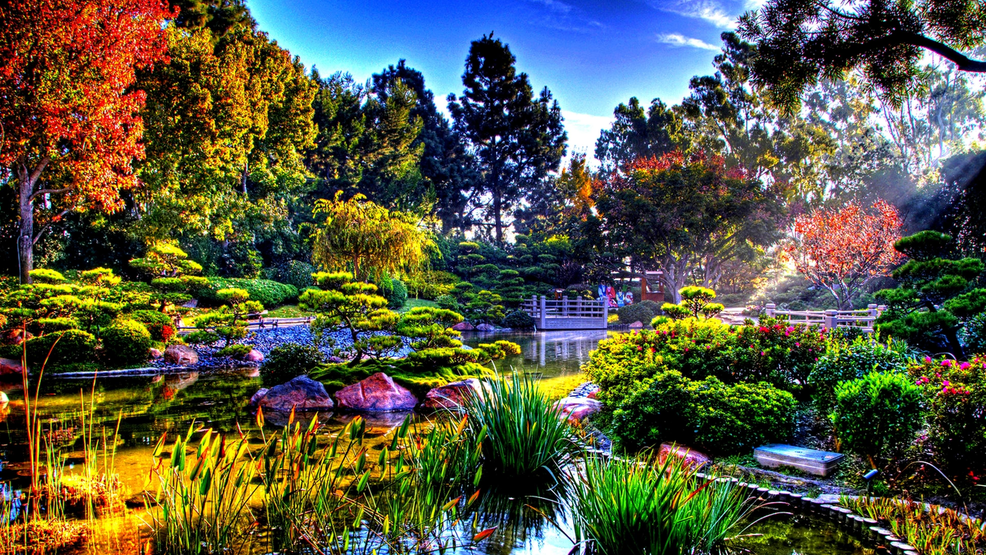 Colorful nature in the sun rays Japanese Garden Wallpaper