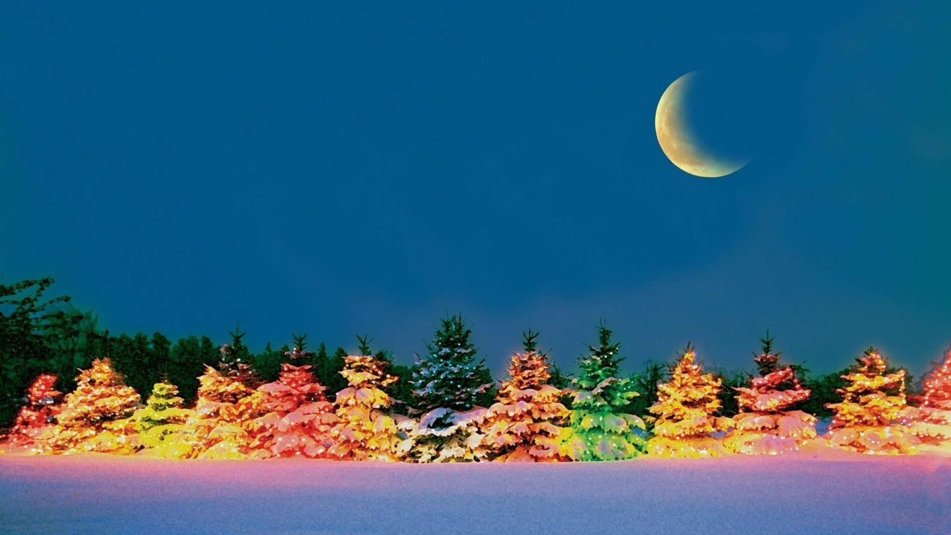 Colorful Tree In The Cold Winter Night Hd Wallpaper