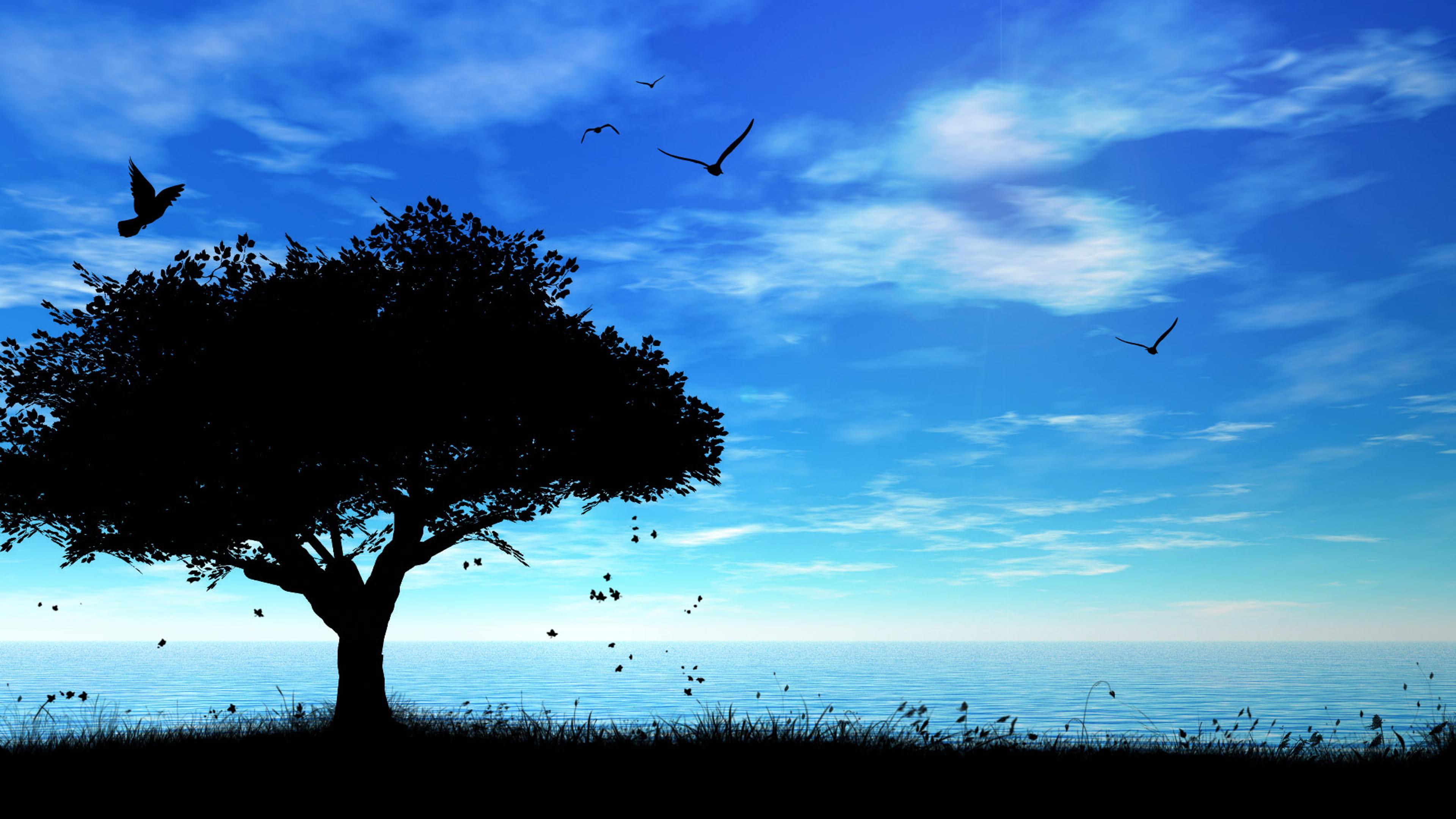 Dark shadow tree blue night wallpaper download 3840x2160 voltagebd Choice Image