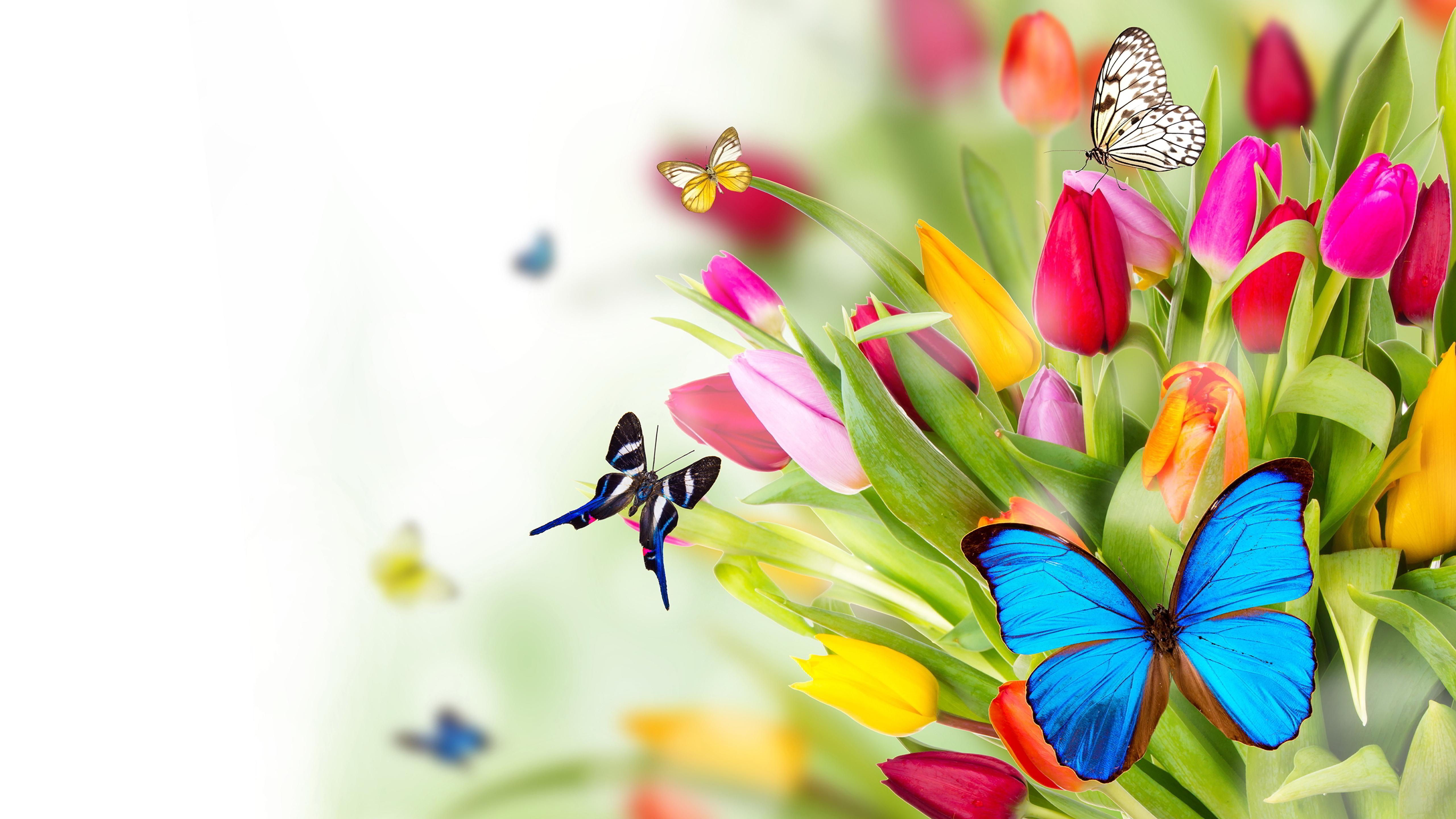 Живые обои цветы 7
