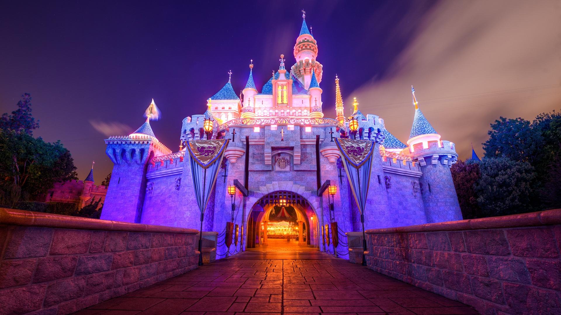 Disneyland Castle Beautiful In The Night