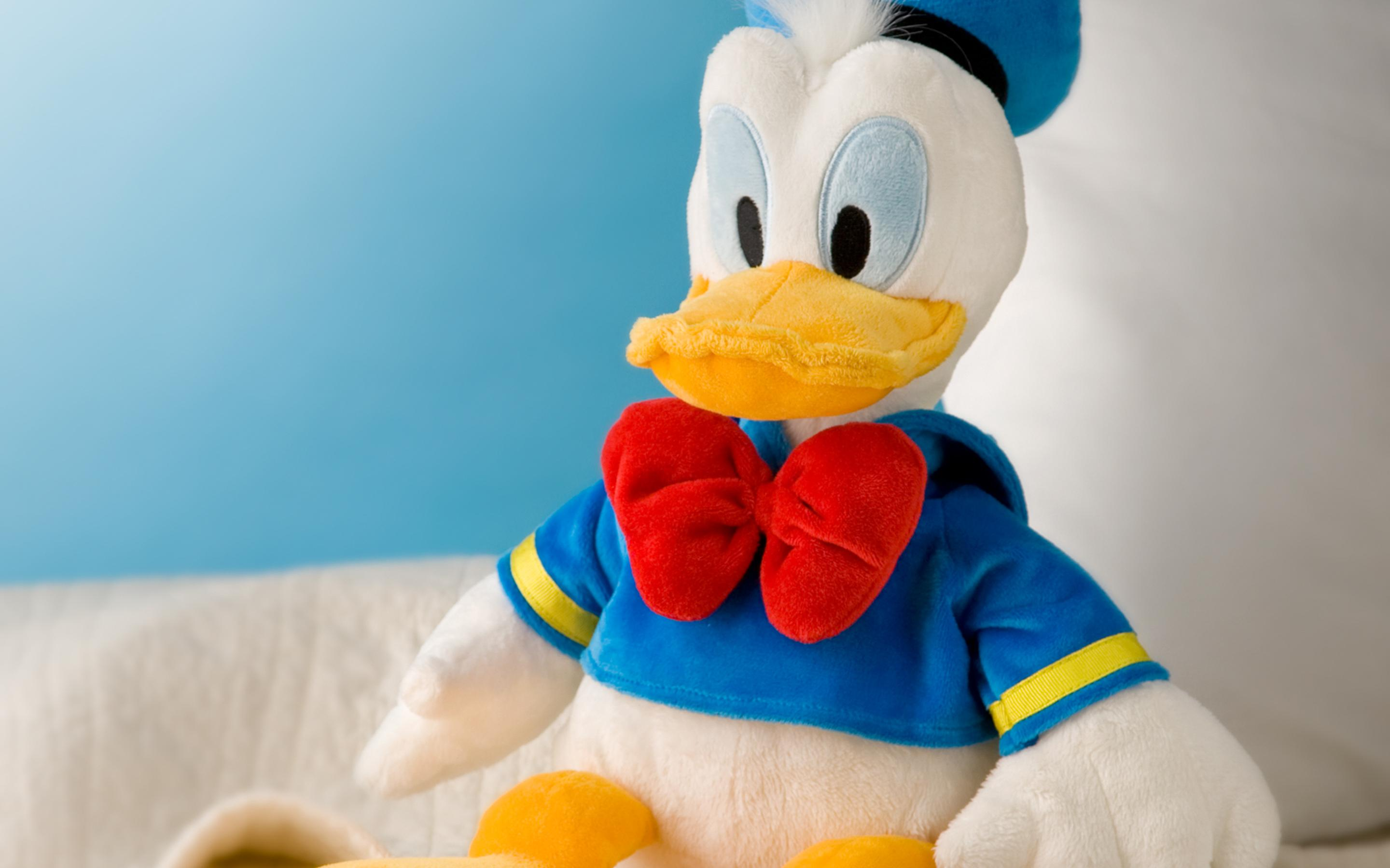 Donald Duck Plush Toy On The Sofa Wallpaper Download 2880x1800