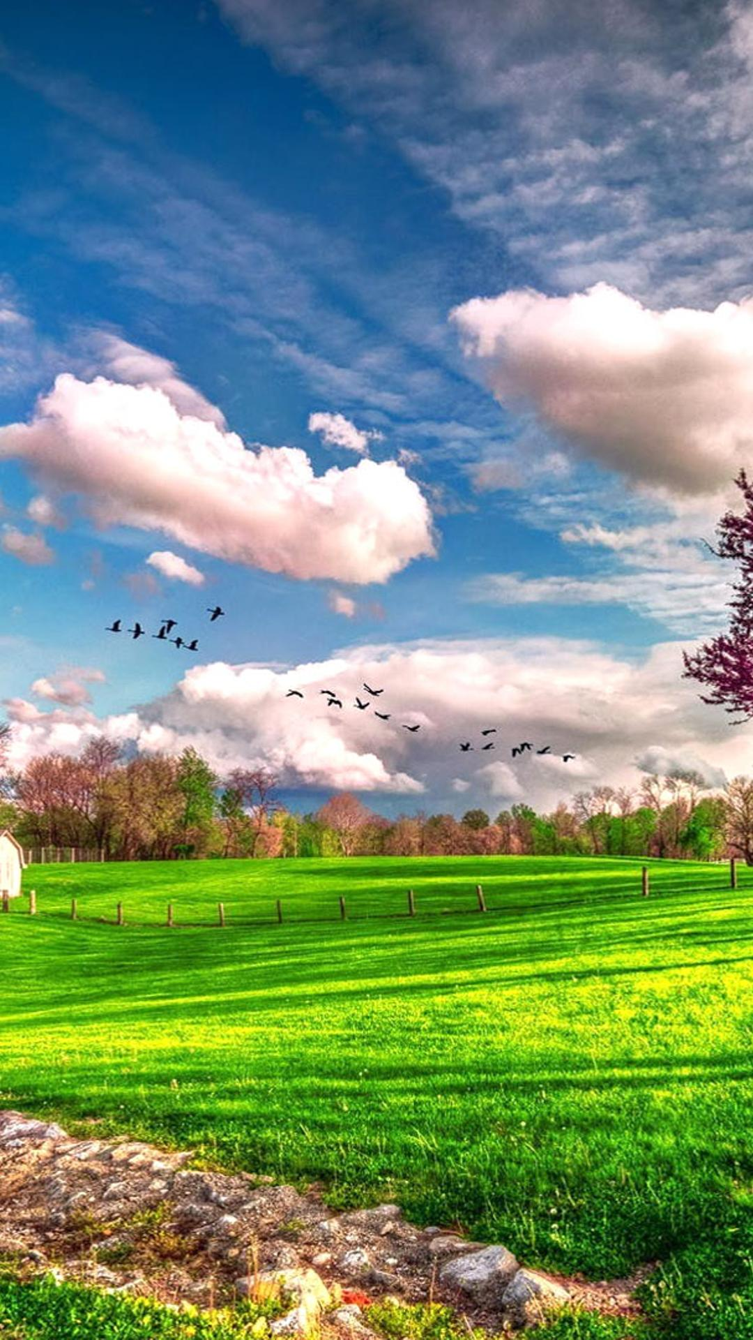 Hd wallpaper 1080x1920 - Landscape Beautiful Spring Nature Hd Wallpaper Wallpaper Download 1080x1920