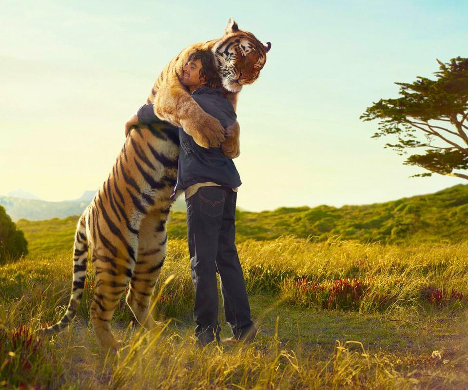 Tiger Art Wallpaper Jpg 960 800: Man Hugs A Tiger HD Wallpaper Download 960x800