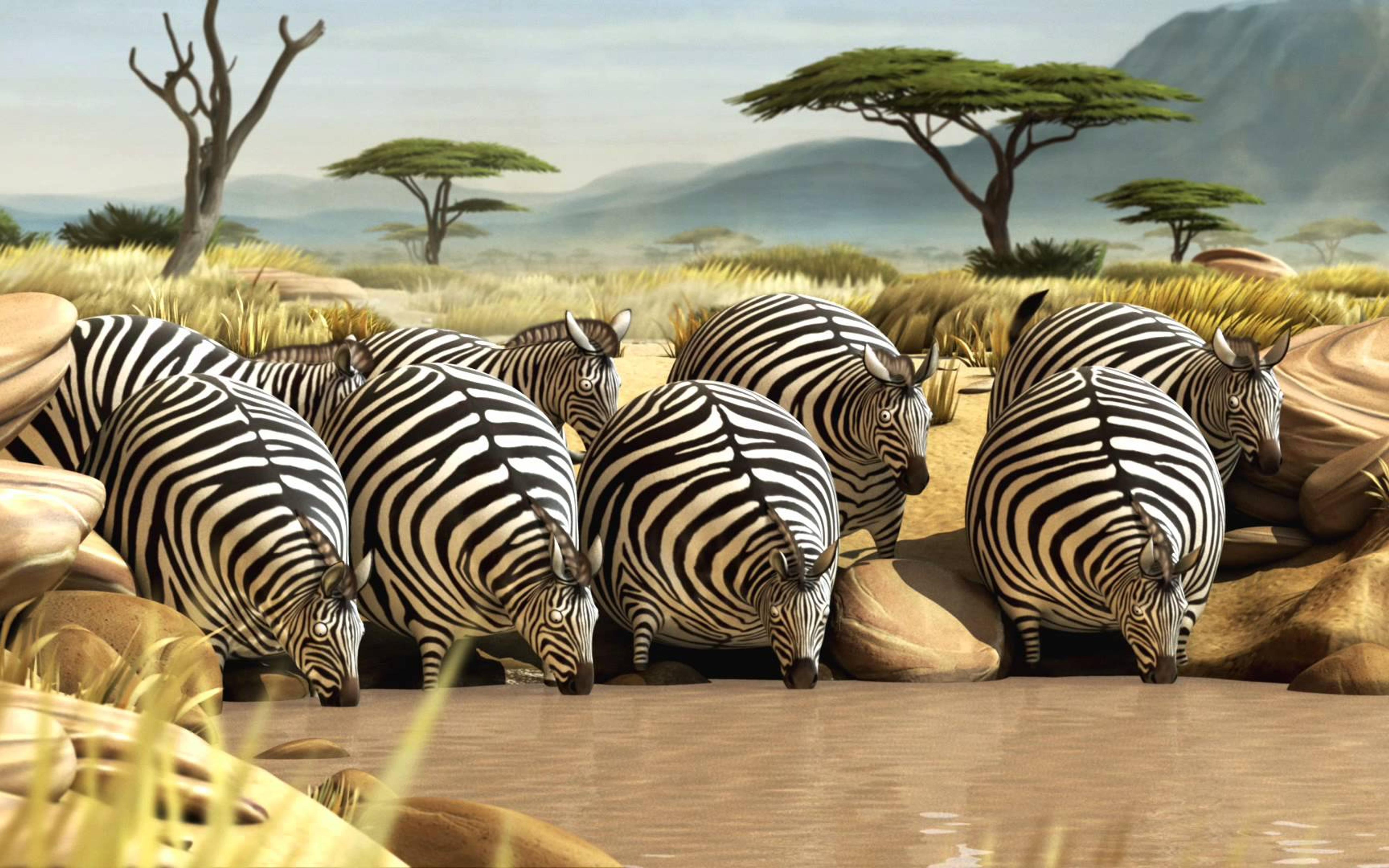 Фото африканских толстушек 13 фотография