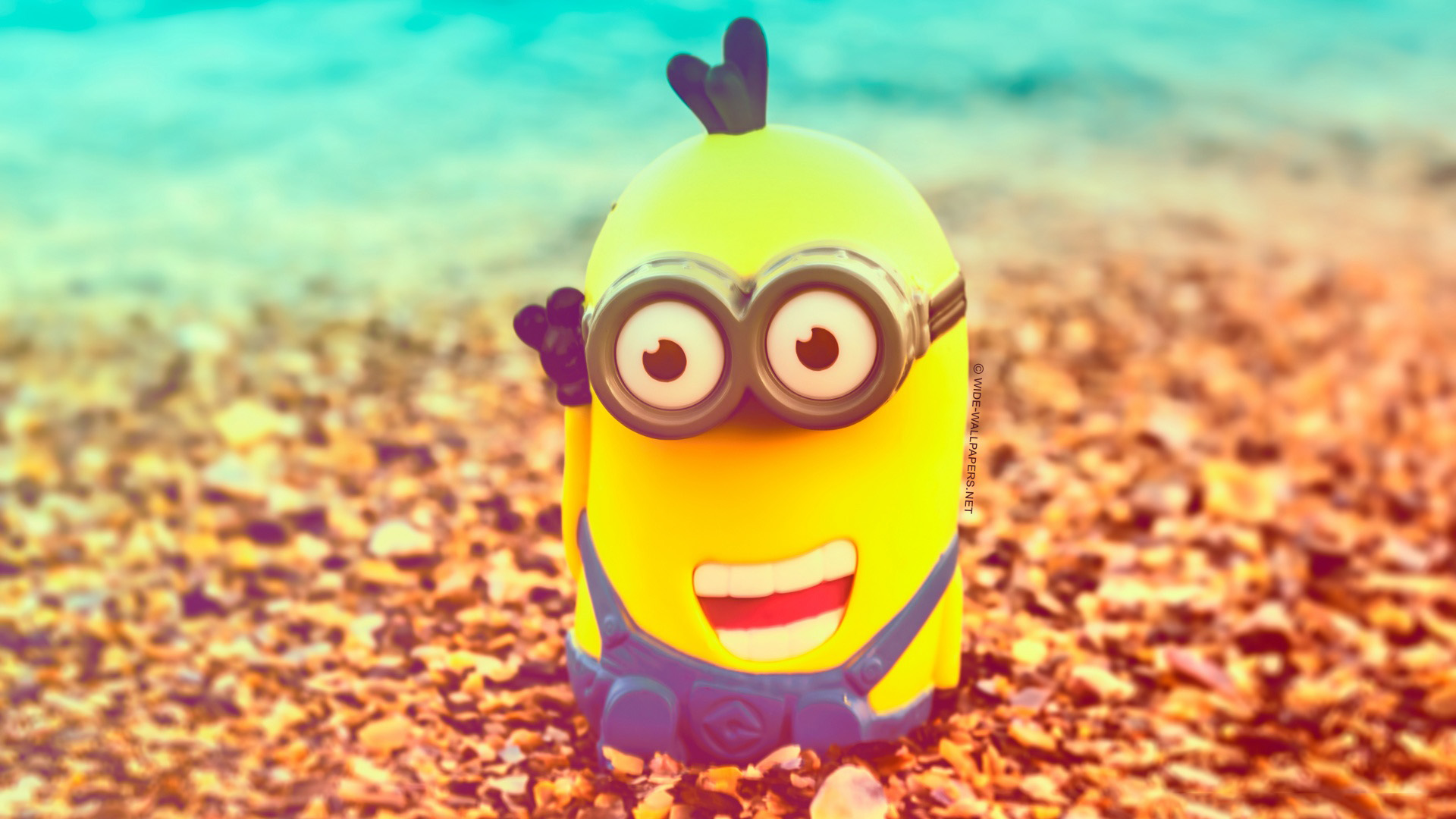 Most Inspiring Wallpaper Cartoon Smile - minion-with-a-smile-on-face-anime-wallpaper-1920x1080  Collection_934267   .jpg