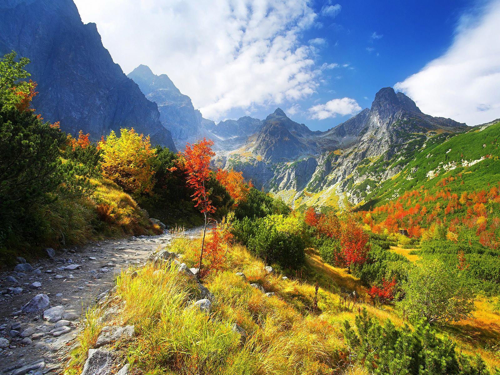 Mountain Path Sunny Autumn Day