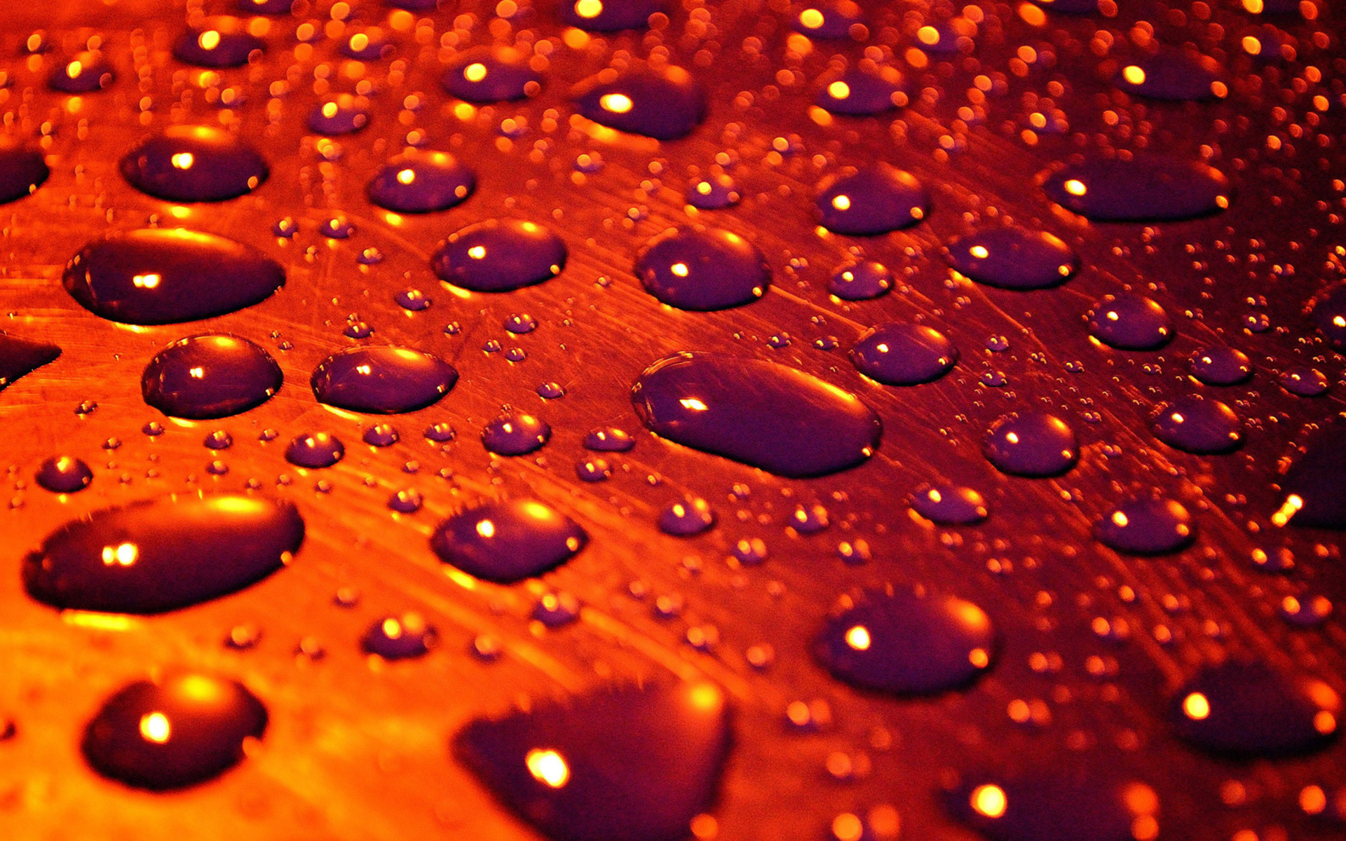 orange 3d wallpaper with many water drops