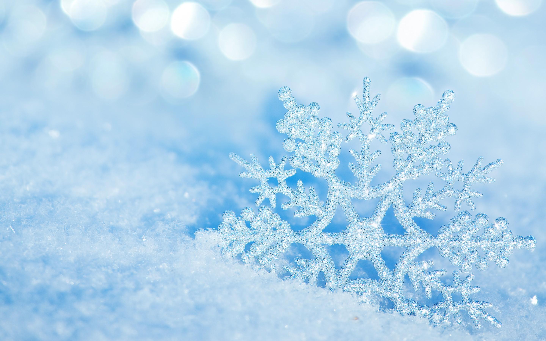 4K 10min Longest Free Snowflakes Falling Best Winter 2019 ... |Real Snowflakes Background