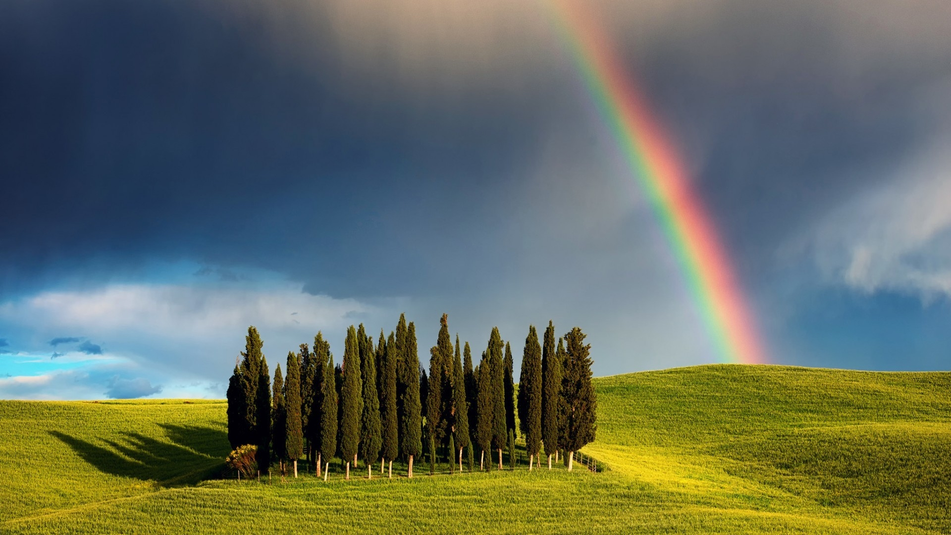 Rainbow over the few trees on hill wallpaper download 1920x1080 download wallpaper 1920x1080 rainbow over the few trees on hill voltagebd Gallery