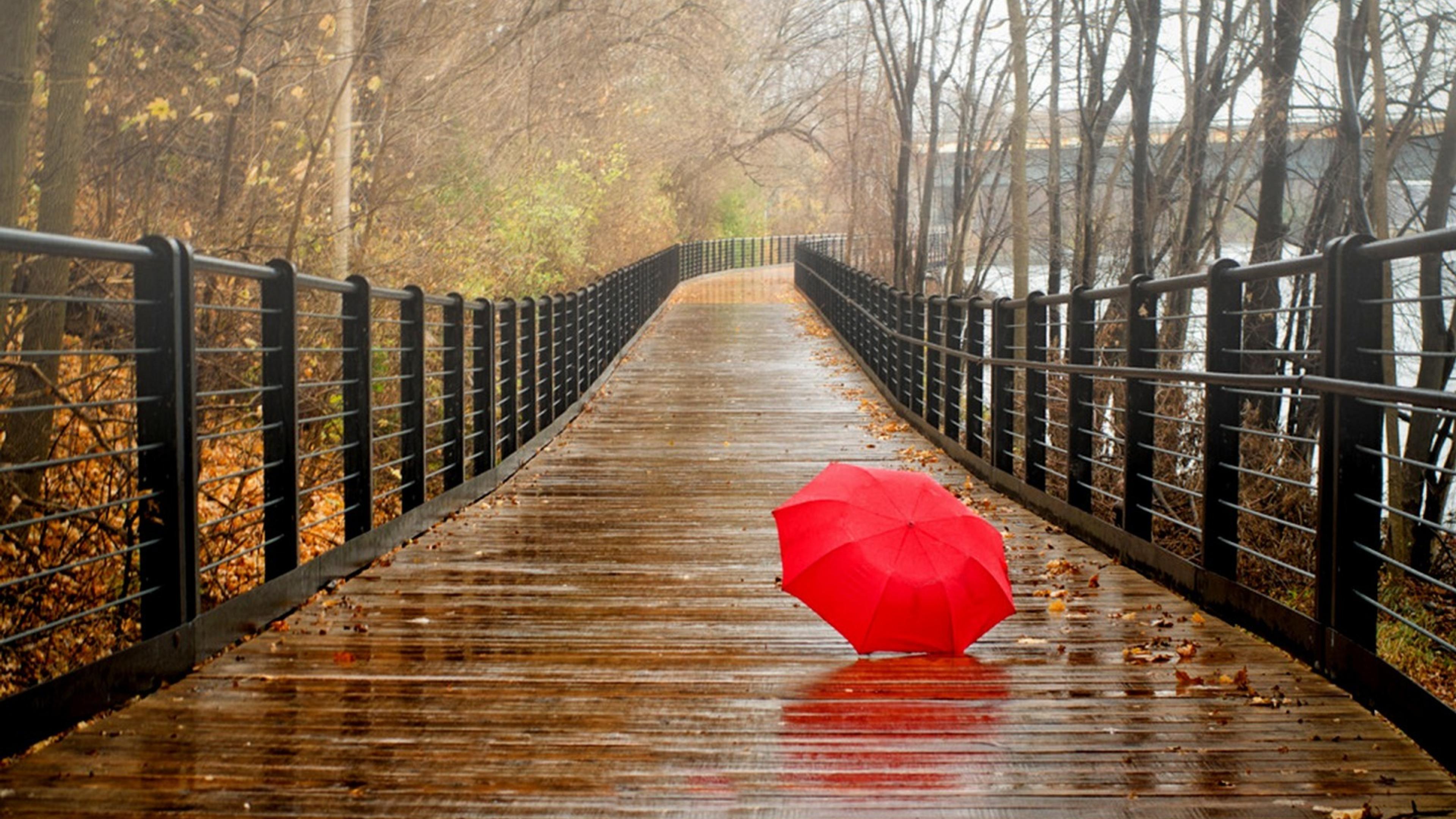 Red umbrella on the bridge - Rainy day Wallpaper Download ...