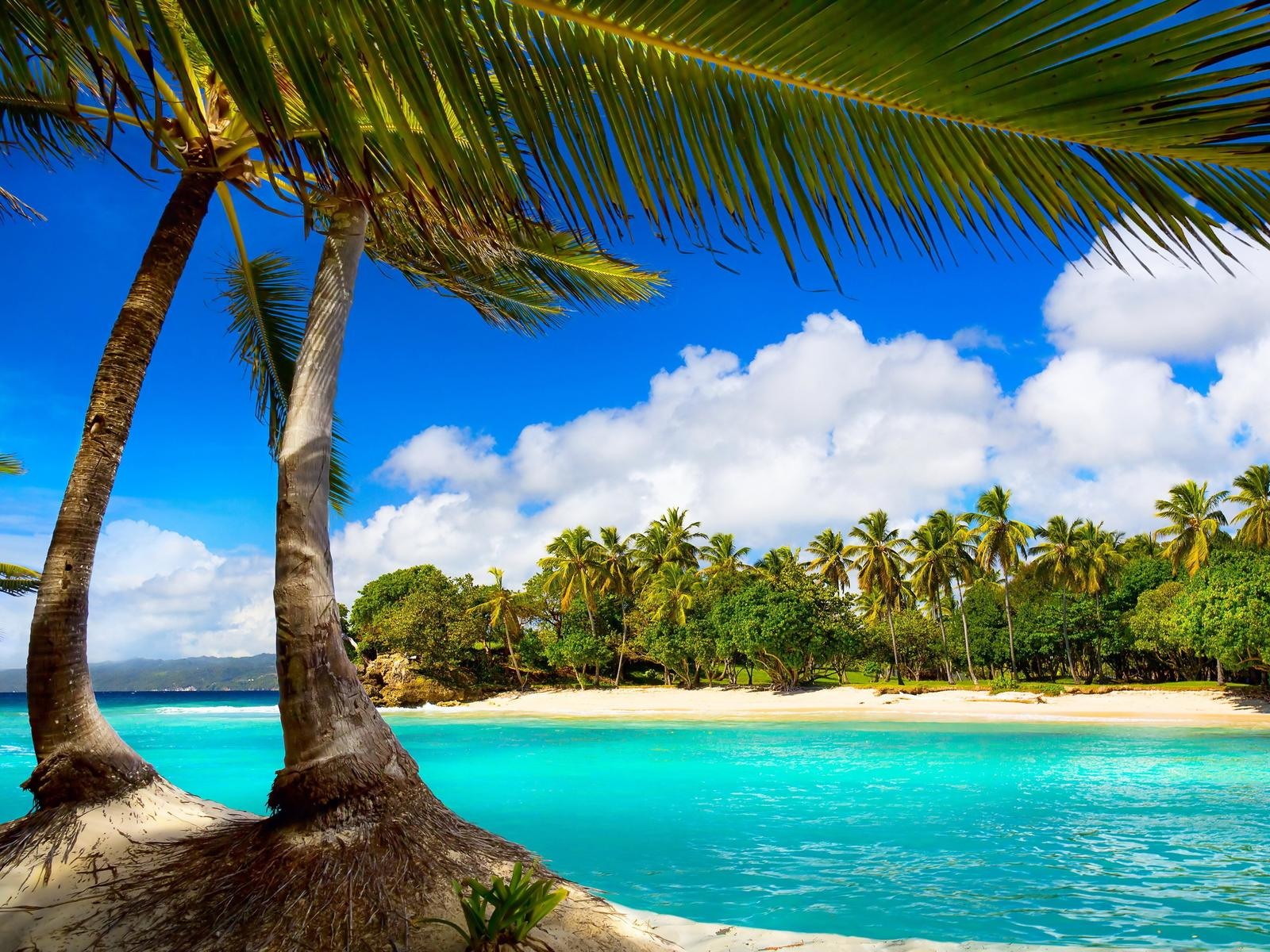 Relaxing Place For A Special Summer Holiday Tropical Island