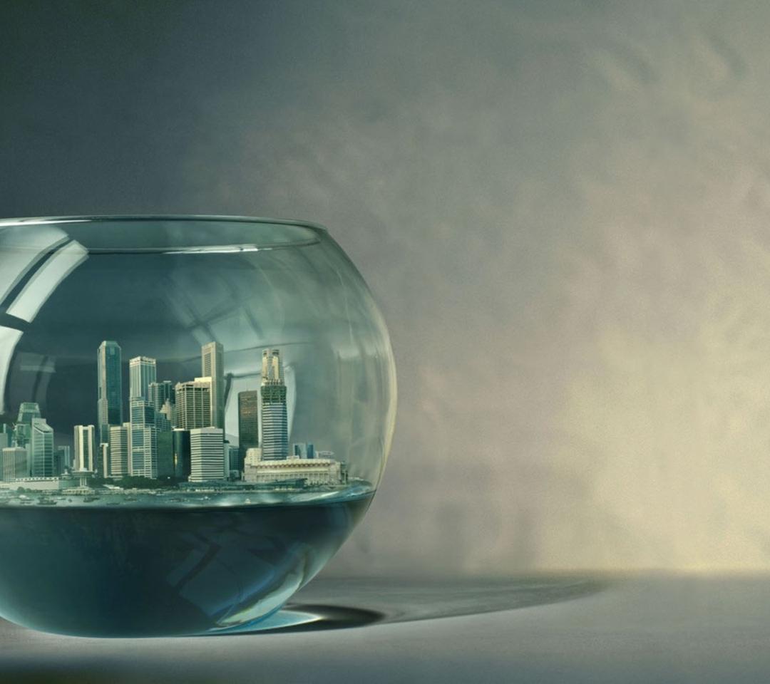 The City In A Fish Aquarium
