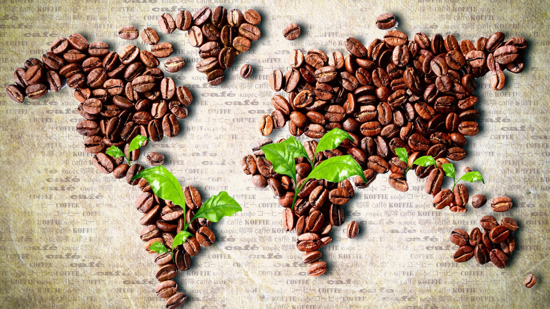 The map of coffee special history wallpaper download 1920x1080 gumiabroncs Images