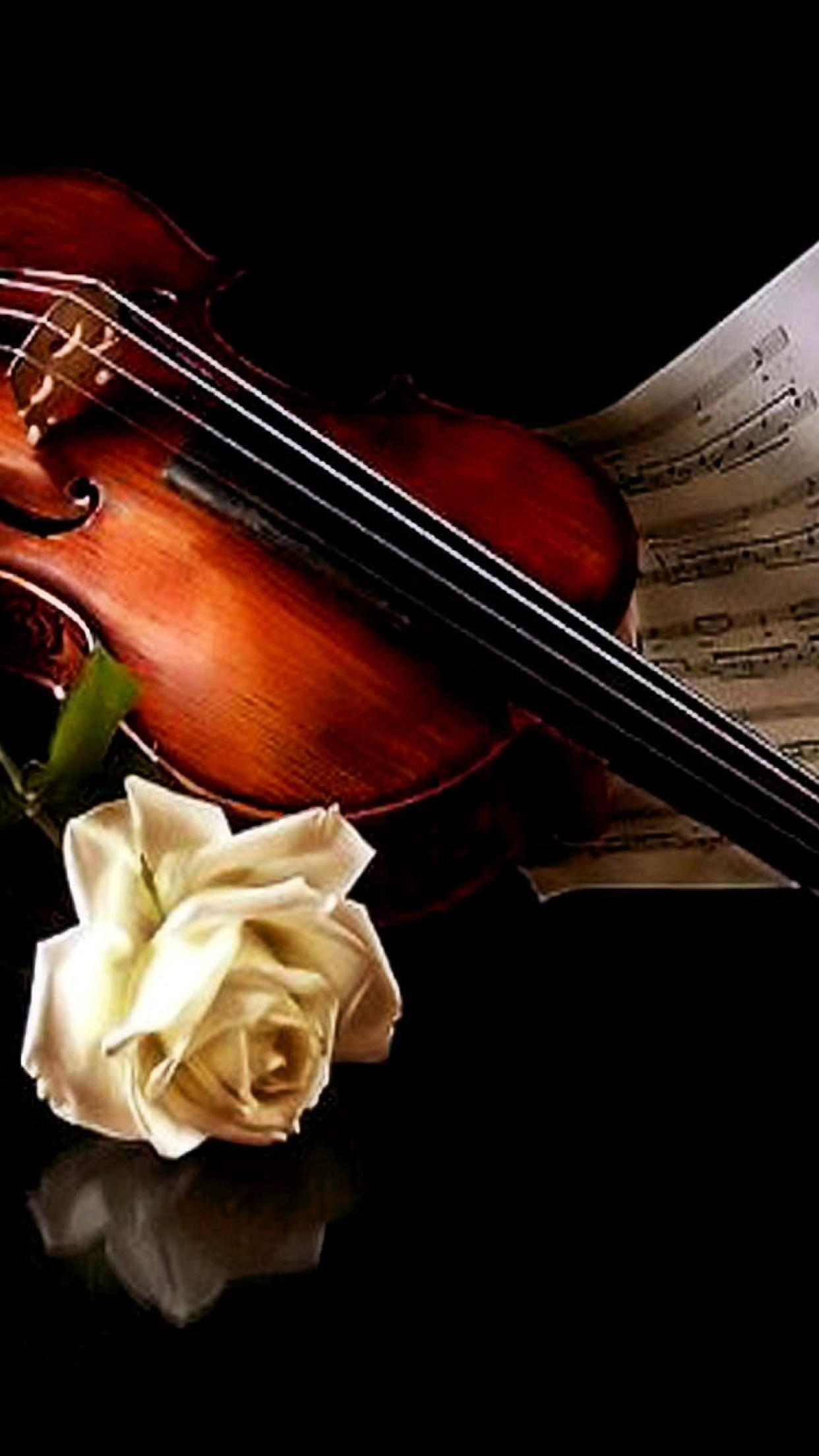 Beautiful Wallpaper Music Rose - the-music-of-violin-and-a-beautiful-white-rose-1242x2208  Trends_46342.jpg
