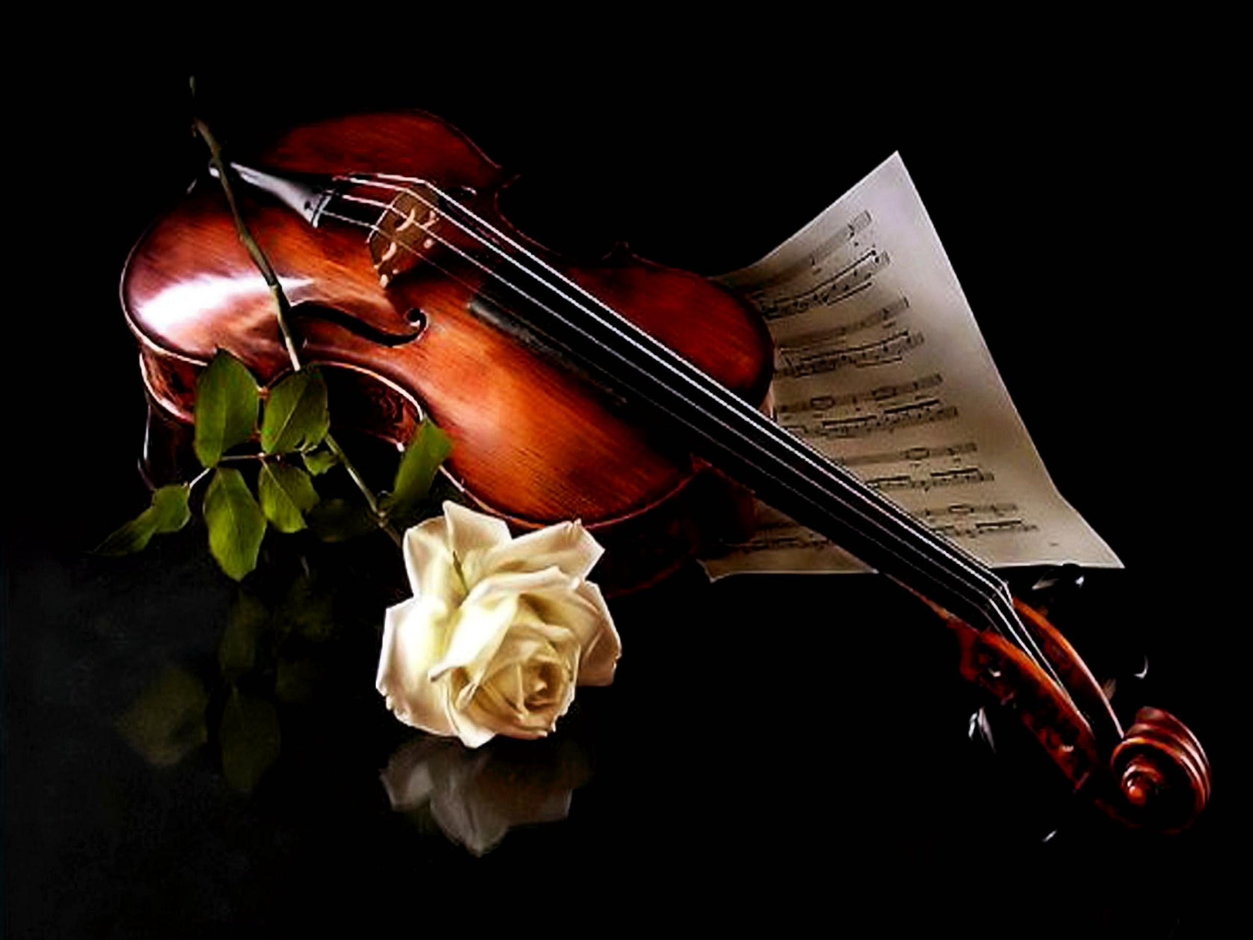 Piano and Violin Wallpaper (62+ images)