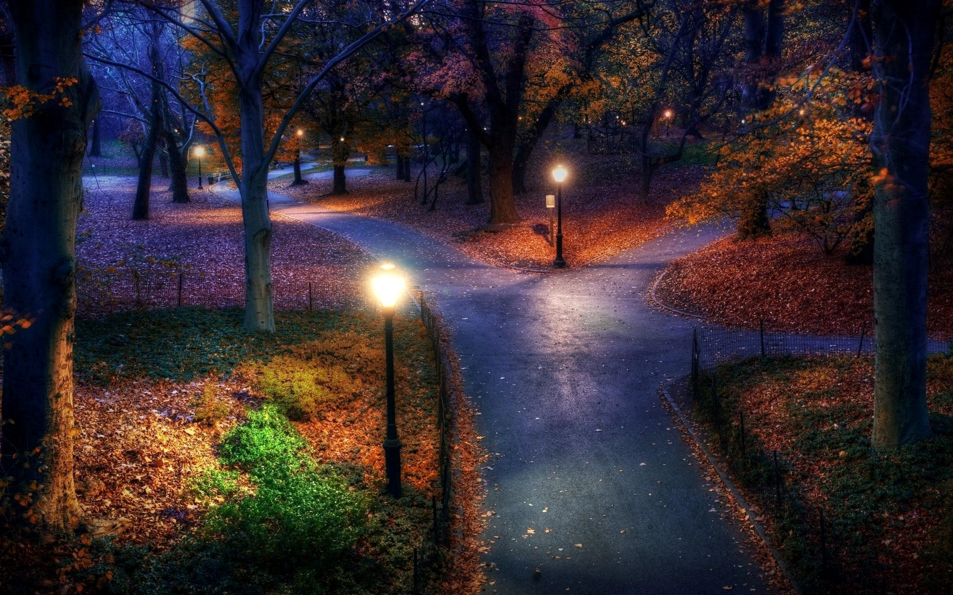 Three Paths In The Park Night Landscape