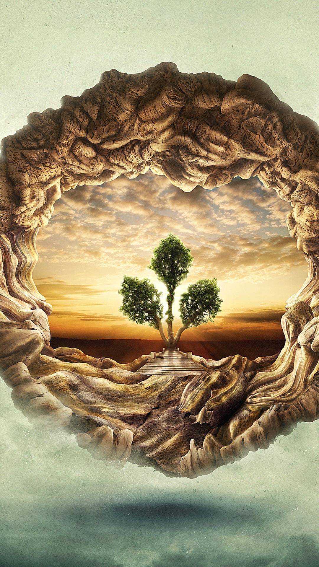 Tree Of Life HD Wallpaper Download 1080x1920