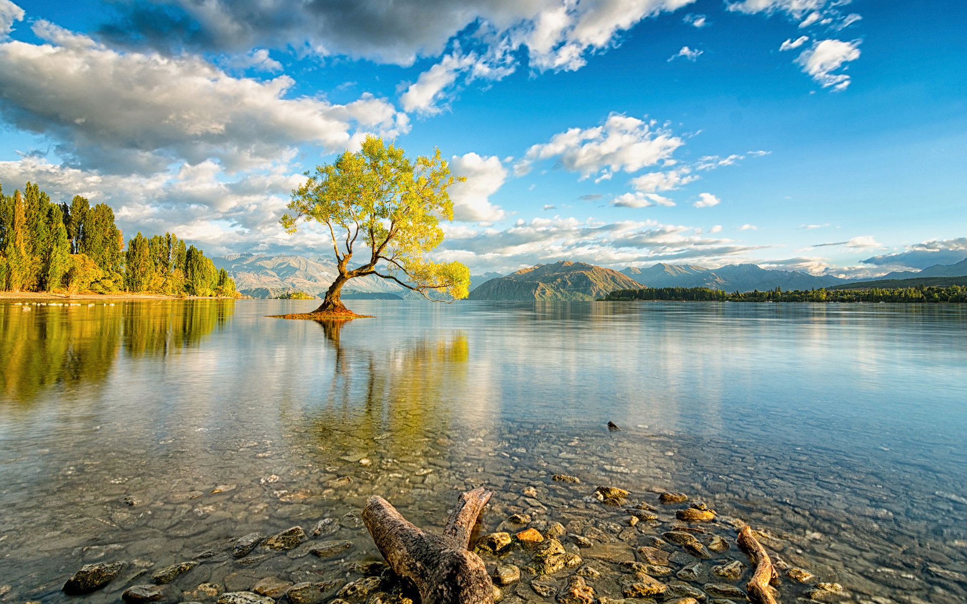 Relaxing hammock on the beautiful blue water