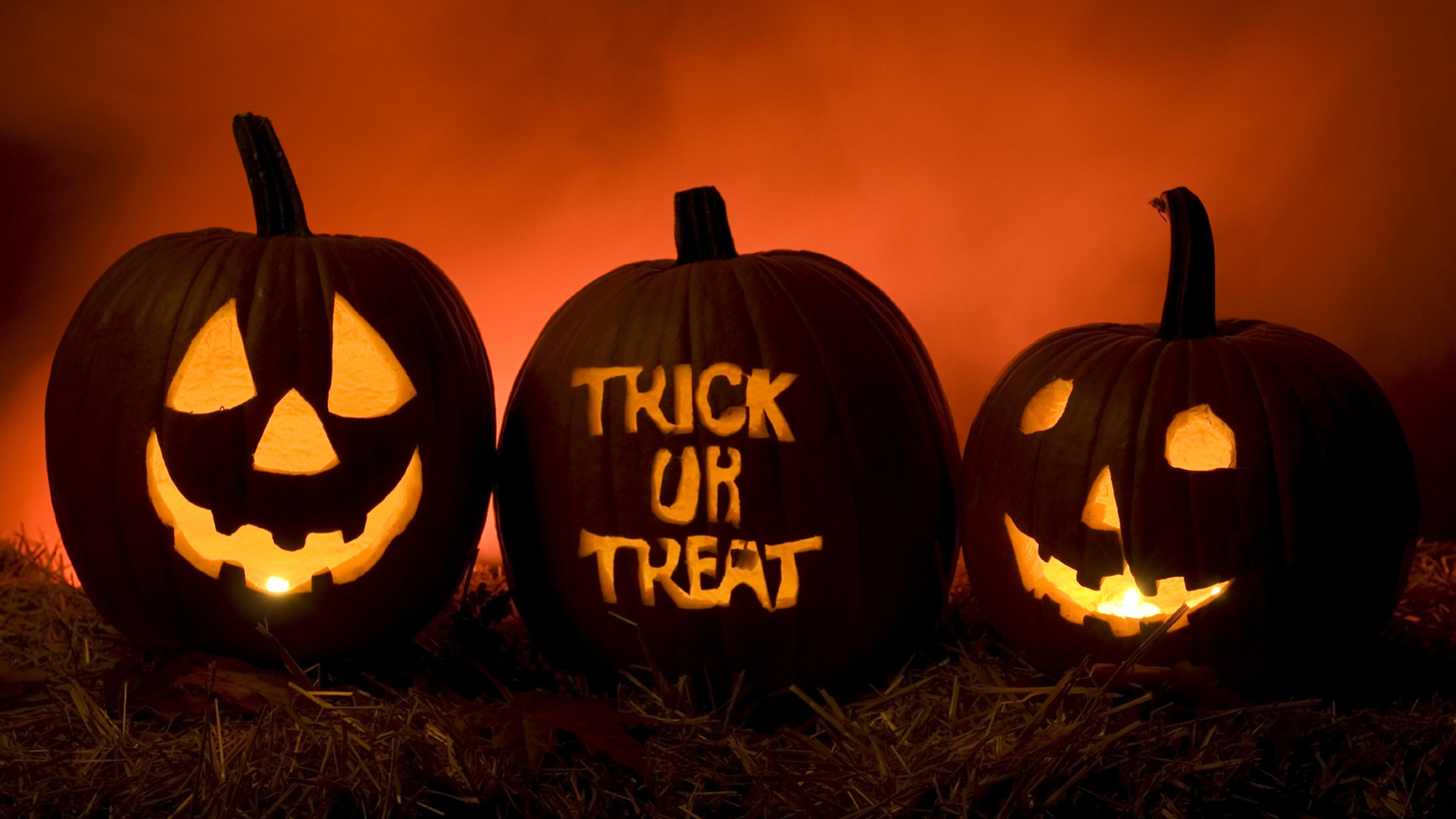 trick or treat happy pumpkins of halloween wallpaper download 5120x2880 - Halloween Wallpaper Download