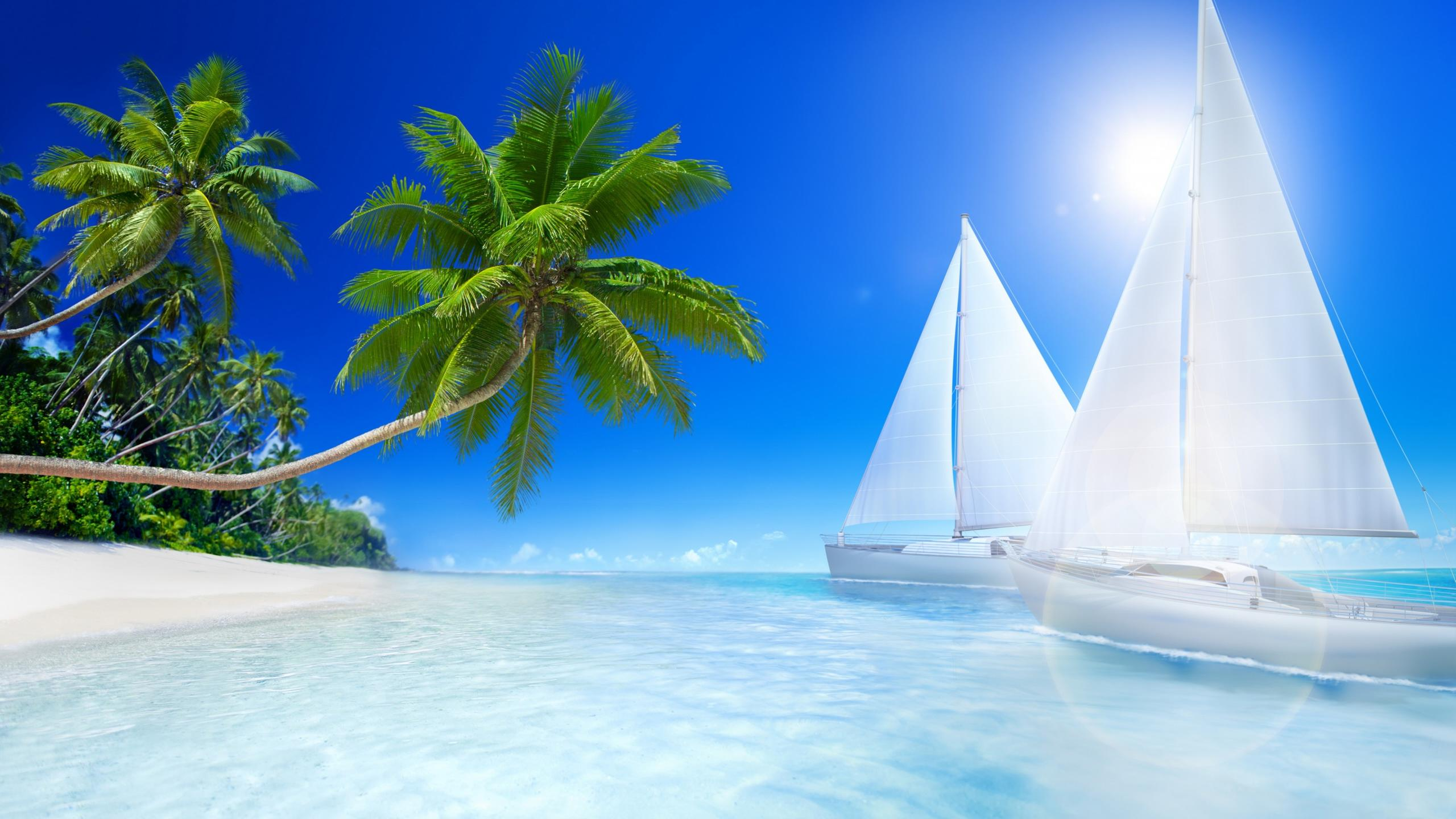 Download Wallpaper 2560x1440 Tropical Beach Palms And Sailboat On The