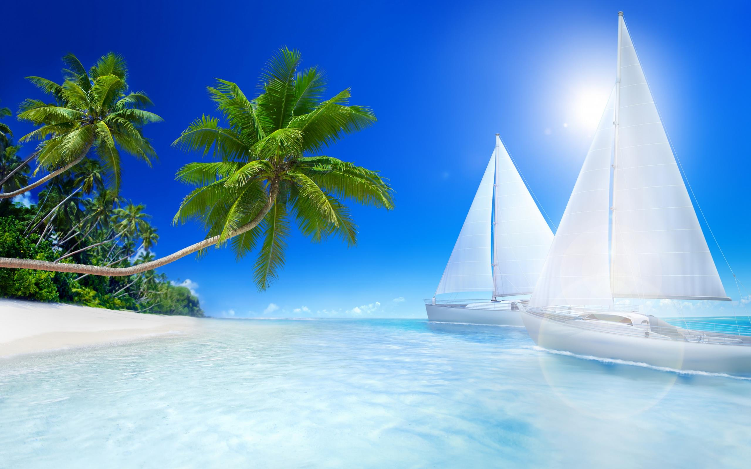 Tropical Beach Palms And Sailboat On The Sea Wallpaper Download 2560x1600