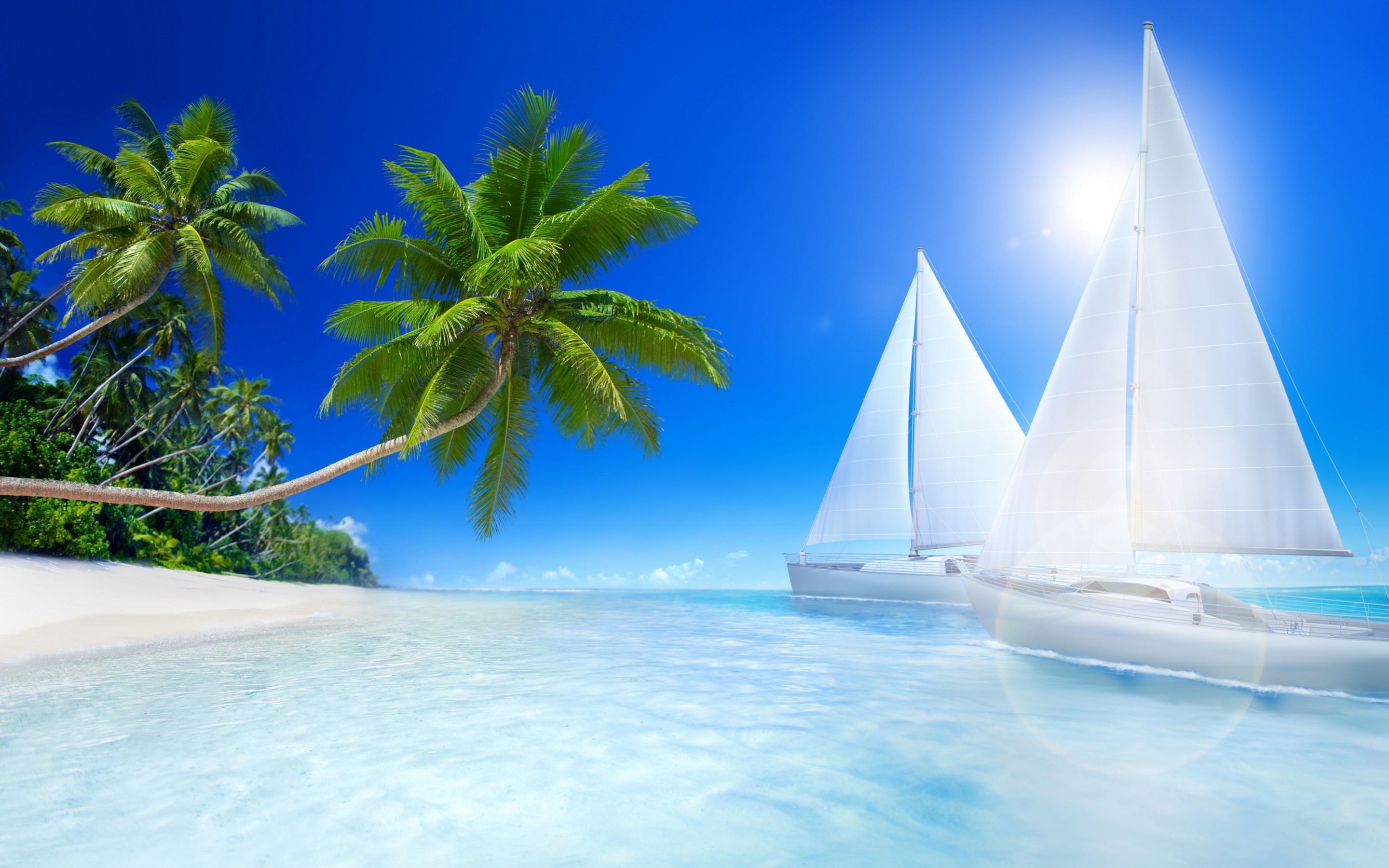Tropical Beach Palms And Sailboat On The Sea
