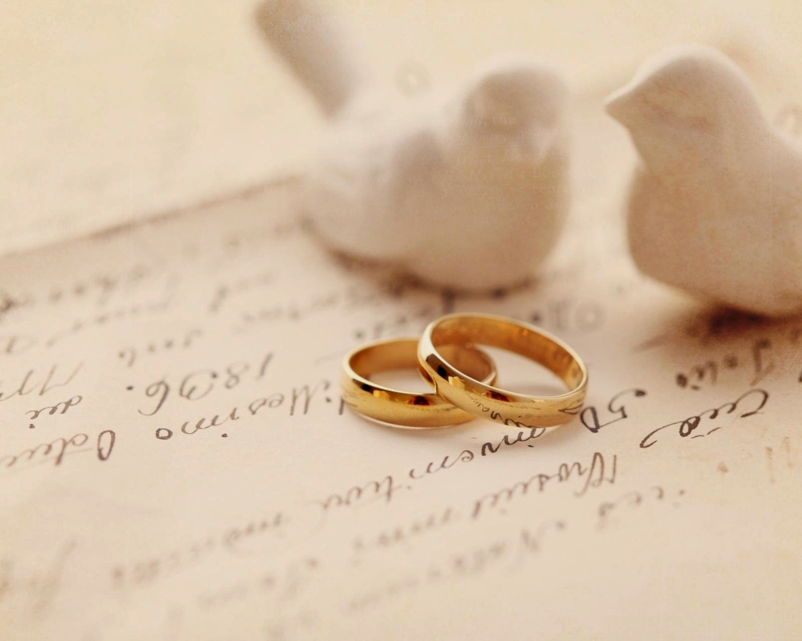Two White Birds And Wedding Rings