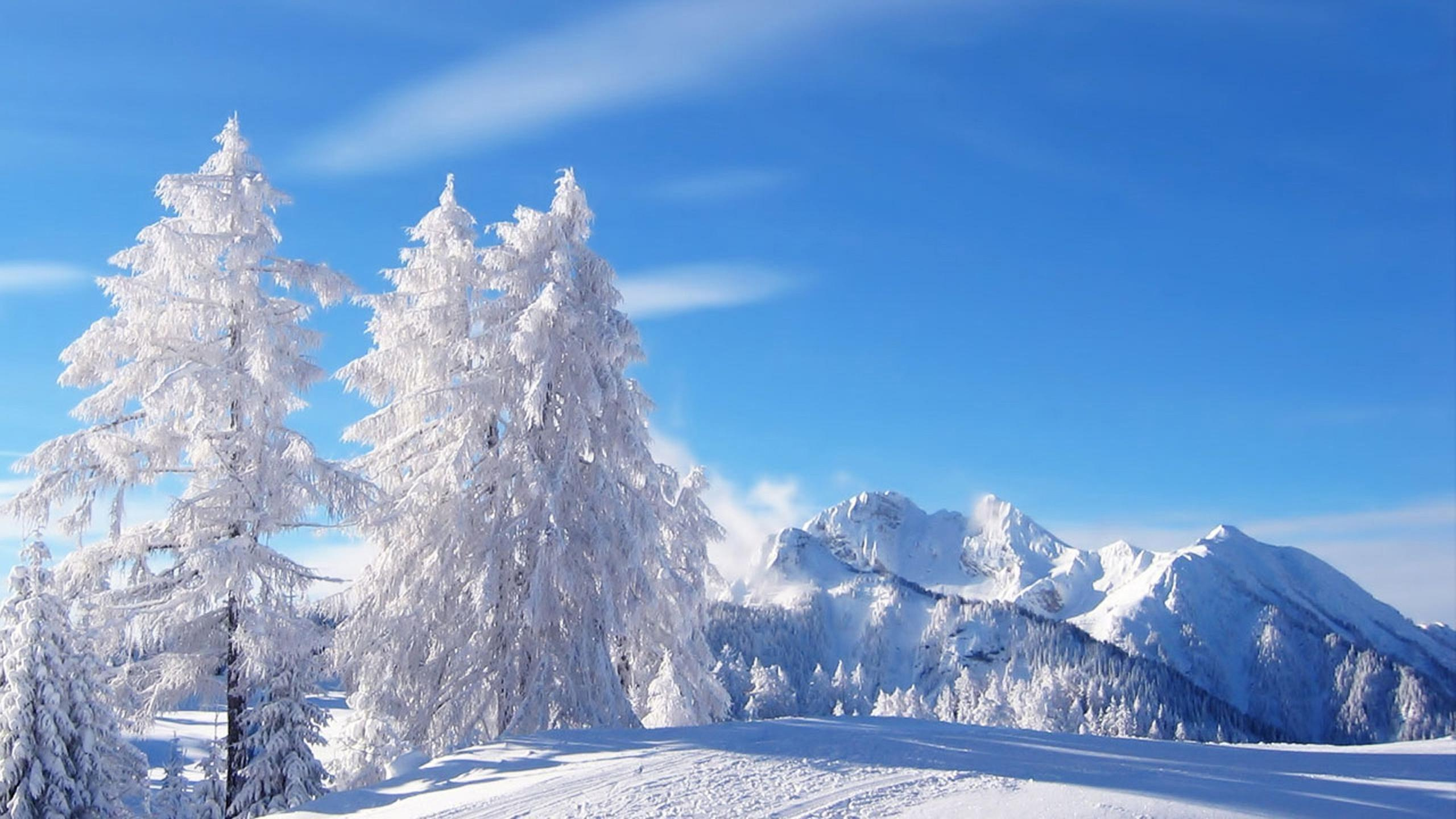 seasons season and hot long days winter Quick information on the distribution of seasons of jammu and kashmir  the days can be hot with strong  summer and long – long winter.
