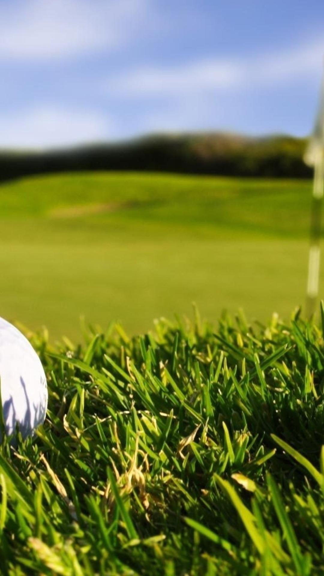 Golf Ball Macro wallpaper