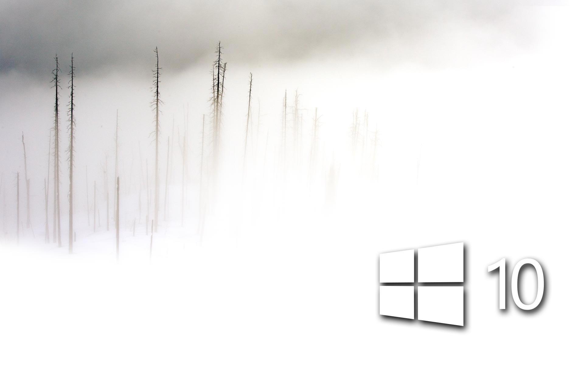 White Windows 10 In The Foam Frozen Wallpaper