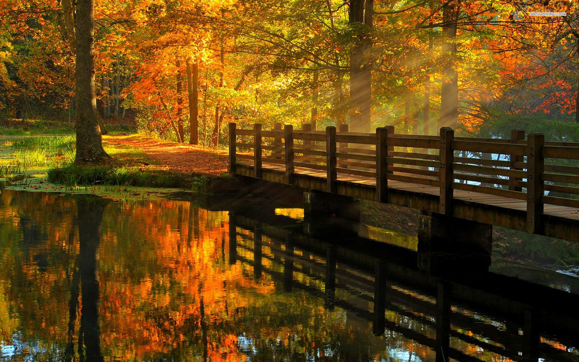 Wooden Bridge Over The River Beautiful Autumn Day