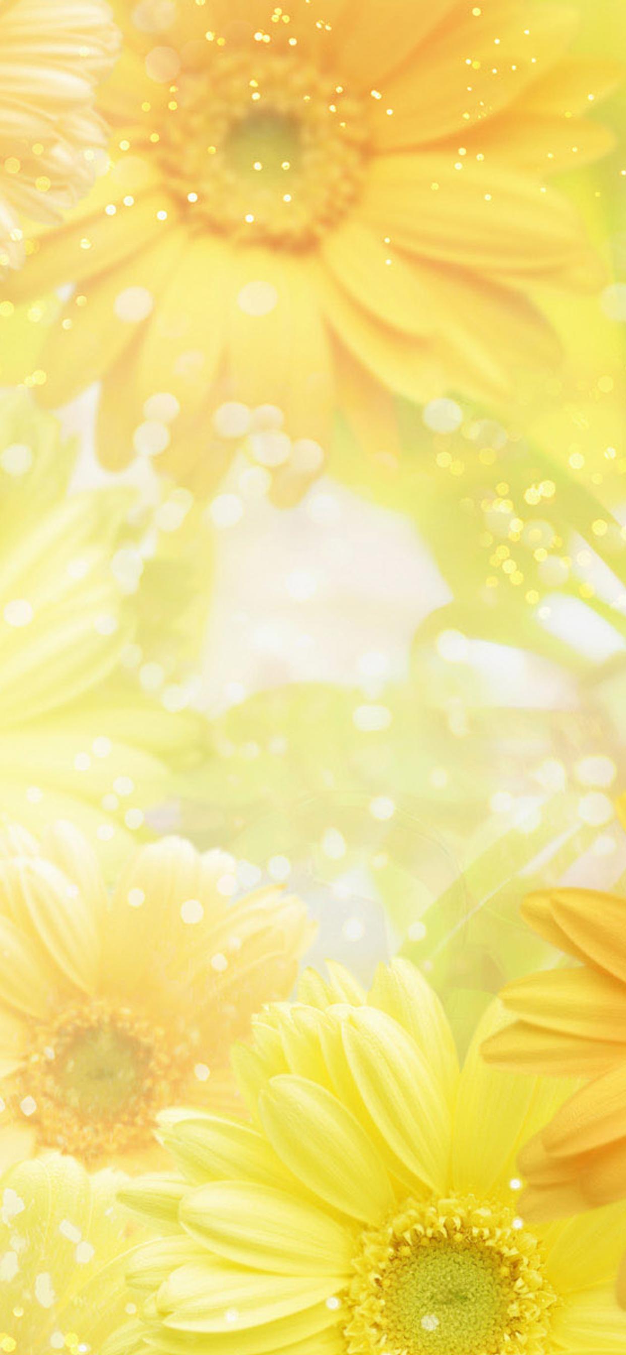 Wonderful Yellow Flowers On The Screen Hd Wallpaper